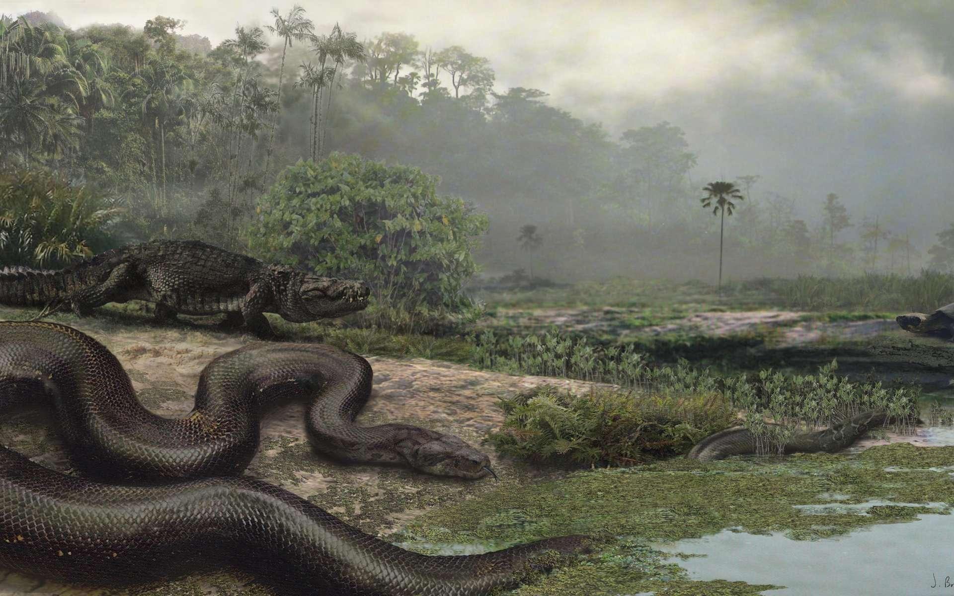 Un titanoboa attend patiemment que s'approche cet appétissant crocodile ou bien cette tortue géante, encore un peu loin. Cette magnifique illustration est l'œuvre de Jason Bourque, étudiant à l'université de Floride et qui a participé à l'étude. © J. Bourque