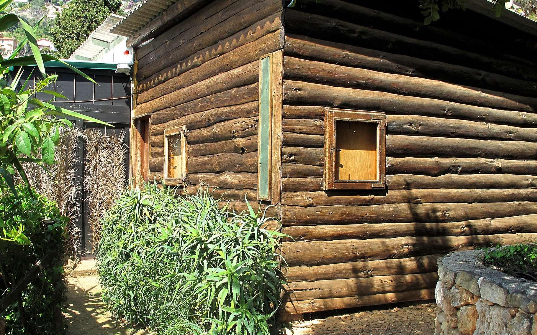 Maison Japonaise Traditionnelle Construire aux origines de l'architecture antique, la cabane primitive