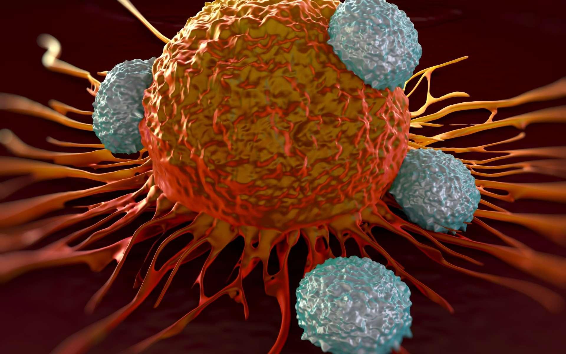 Illustration d'une cellule cancéreuse attaquée par plusieurs lymphocytes T. © royaltystockphoto, Adobe Photo