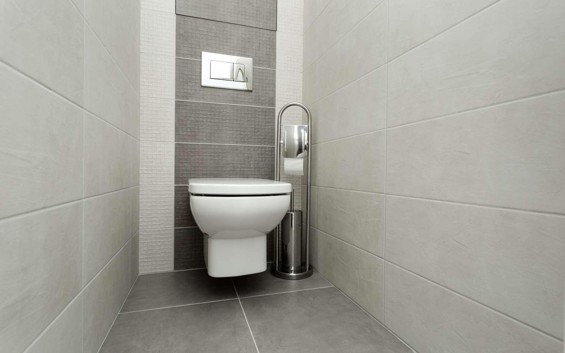 Résolument moderne, un WC suspendu permet de nettoyer facilement le sol des toilettes et offre une sensation d'espace dans la pièce. ©©Елена Нестерова / Adobe Stock
