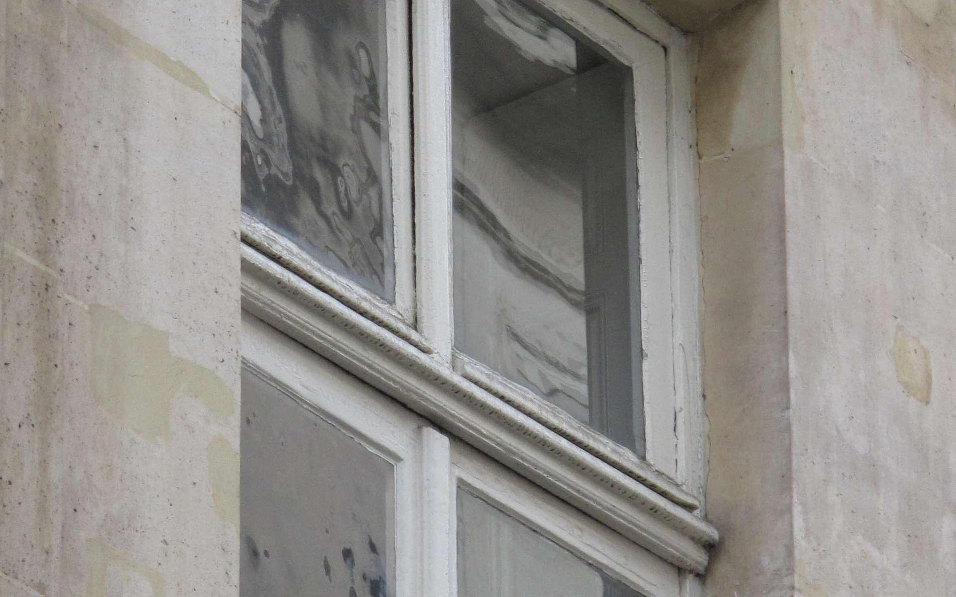 Le vitrage désigne l'ensemble de la vitre et de son châssis. © Tangopaso, Domaine public, Wikimedia Commons