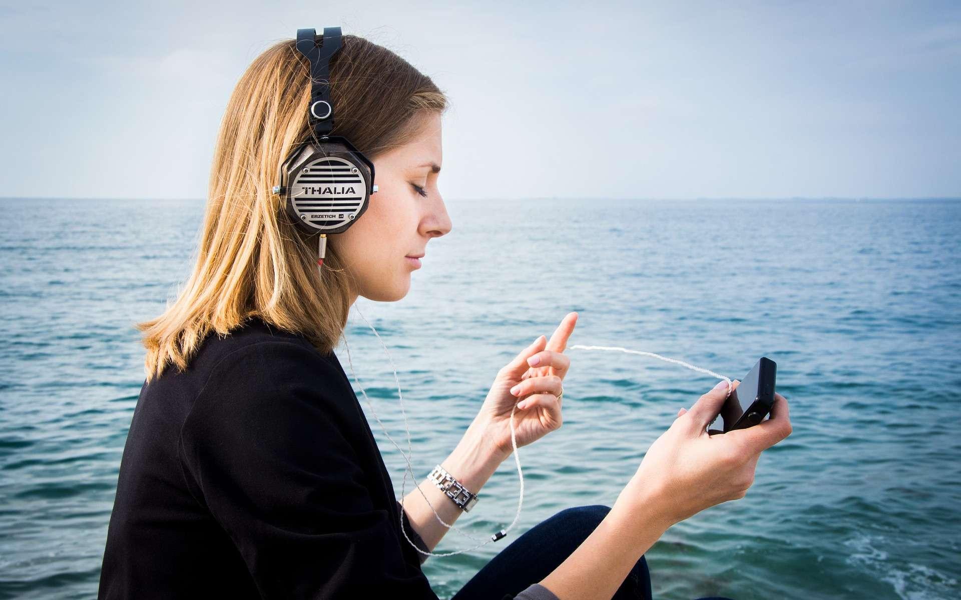Dans chaque écouteur, un petit ventilateur et un filtre à particules. © www-erzetich-com, Pixabay