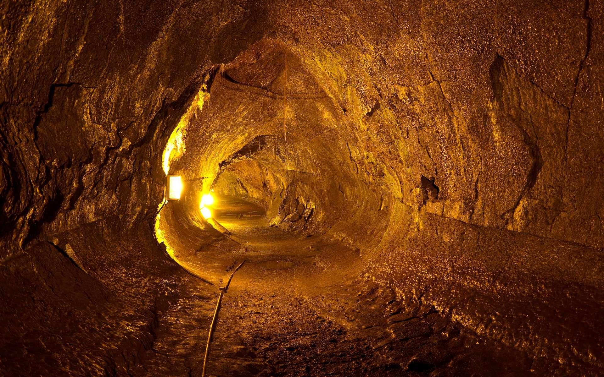 Le tube de lave Thurston à Hawaï. © Frank Schulenburg, cc by sa 3.0, Wikipédia