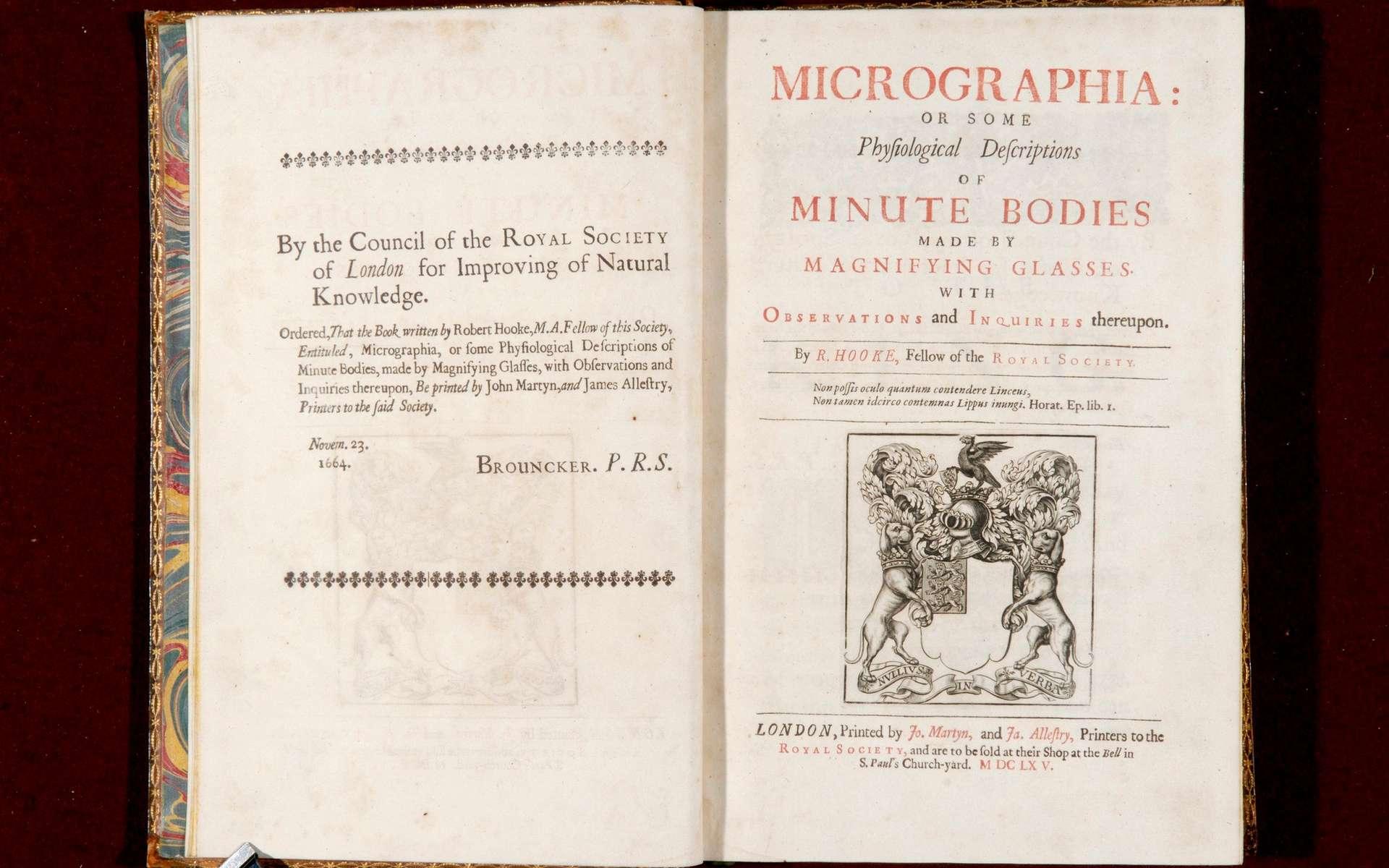 Micrographia, l'un des plus beaux livres de science jamais publiés. © Royal Collection Trust