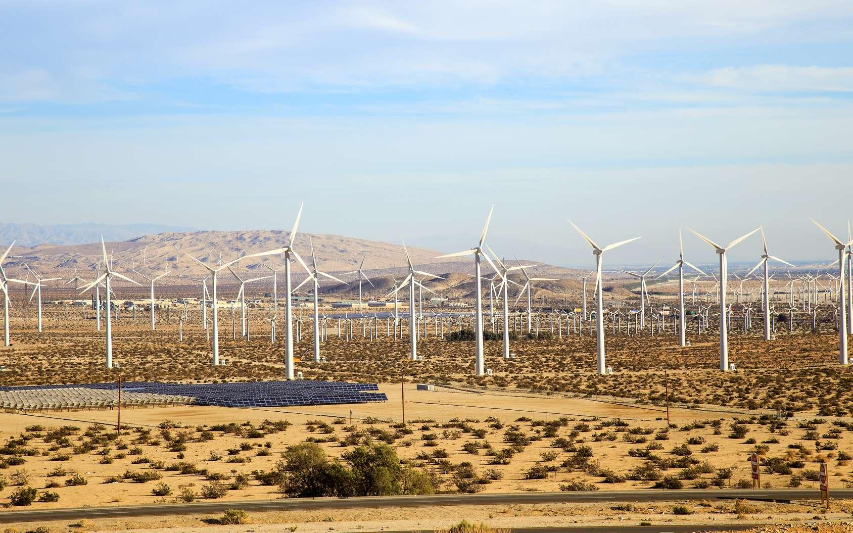 Le Sahara transformé en oasis grâce aux énergies renouvelables ? © Bon, Fotolia