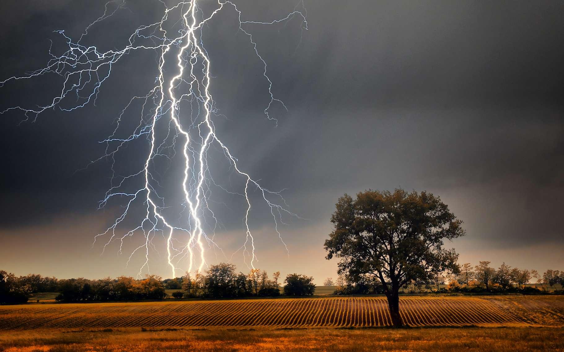 Le spectacle de la foudre est merveilleux. Mais lorsque celle-ci frappe, elle peut faire bien de dégâts. Et notamment, allumer des feux de forêt qui prennent parfois de l'ampleur. C'est pourquoi les chercheurs espèrent parvenir à contrôler le phénomène. © Balazs Kovacs Images, Adobe Stock