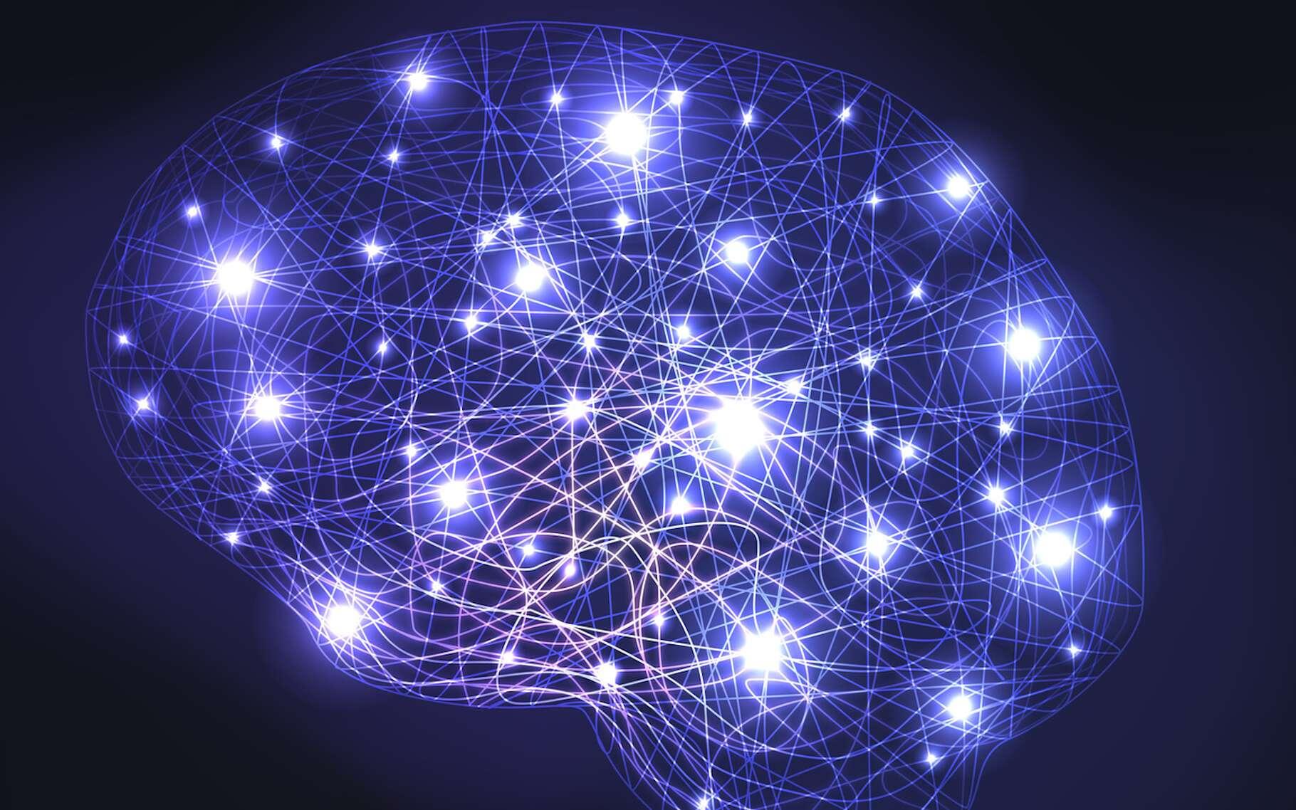 Des chercheurs ont mis au point un algorithme capable de déterminer le QI d'une personne à partir d'une IRM de son cerveau au repos. © pict rider, Fotolia