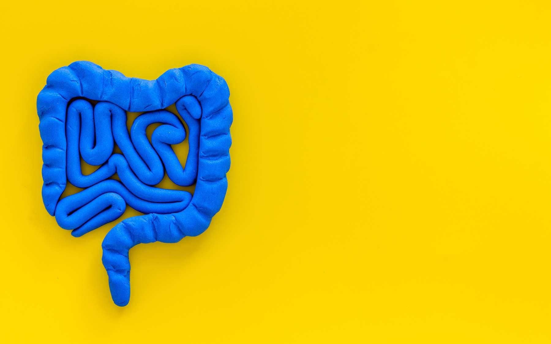 Modifier le microbiote pour réduire l'alcoolisme. © 9dreamstudio, Adobe Stock