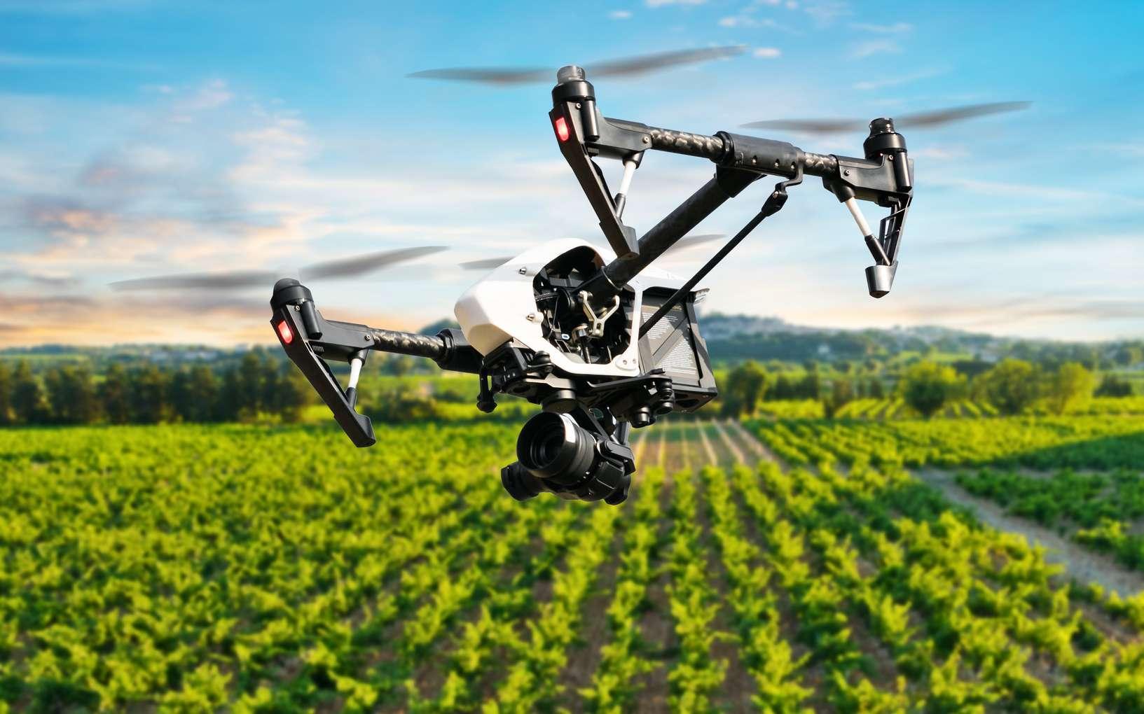 La surveillance de vignobles par drones (ici un modèle différent de celui évoqué dans l'article) commence à se généraliser. Les rôles qu'ils remplissent évoluent rapidement, allant au-delà de la simple caméra. © Jag_cz, Fotolia