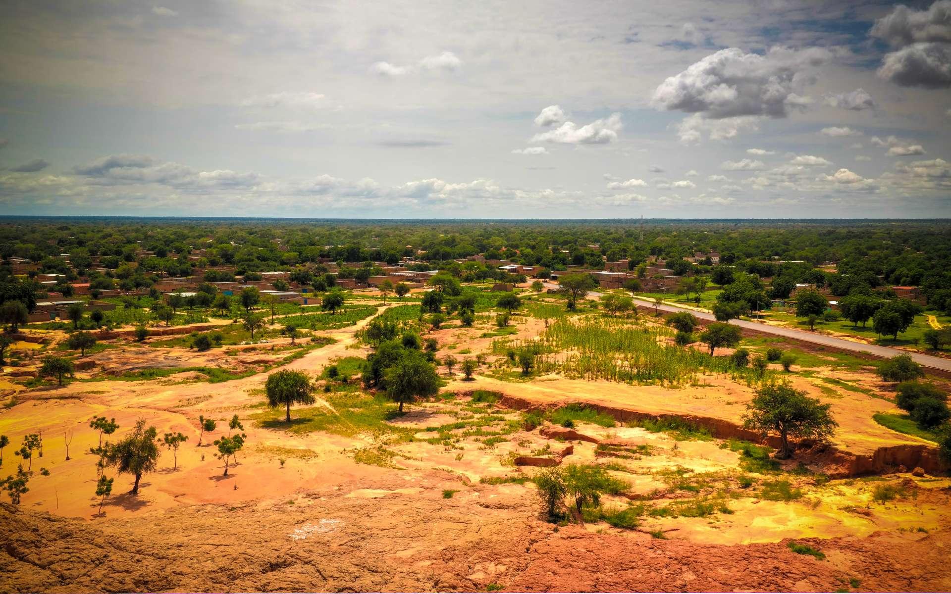 Le Sahel désigne la bande longeant l'Afrique d'ouest en est, qui délimite la partie désertique au nord et les savanes au sud. © homocosmicos, Adobe Stock