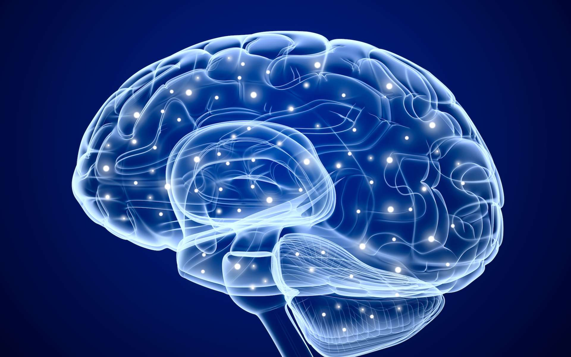 L'épilepsie est une maladie neurologique provoquant des crises. © DR
