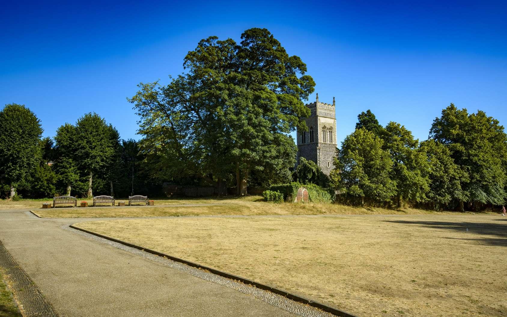 L'Angleterre est touchée par une importante sécheresse depuis plusieurs semaines. Beaucoup de parcs anglais ont perdu de leur éclat vert. Le nord de la France aussi est touchée par une sécheresse inhabituelle. © Lance Bellers, Fotolia