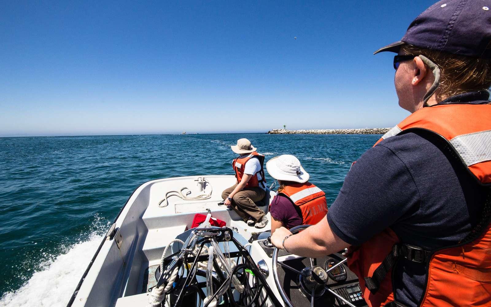 Le mal des transports peut se manifester en voiture, en bateau ou dans des manèges. © Eric Heupel, Flickr, CC by-nc 2.0