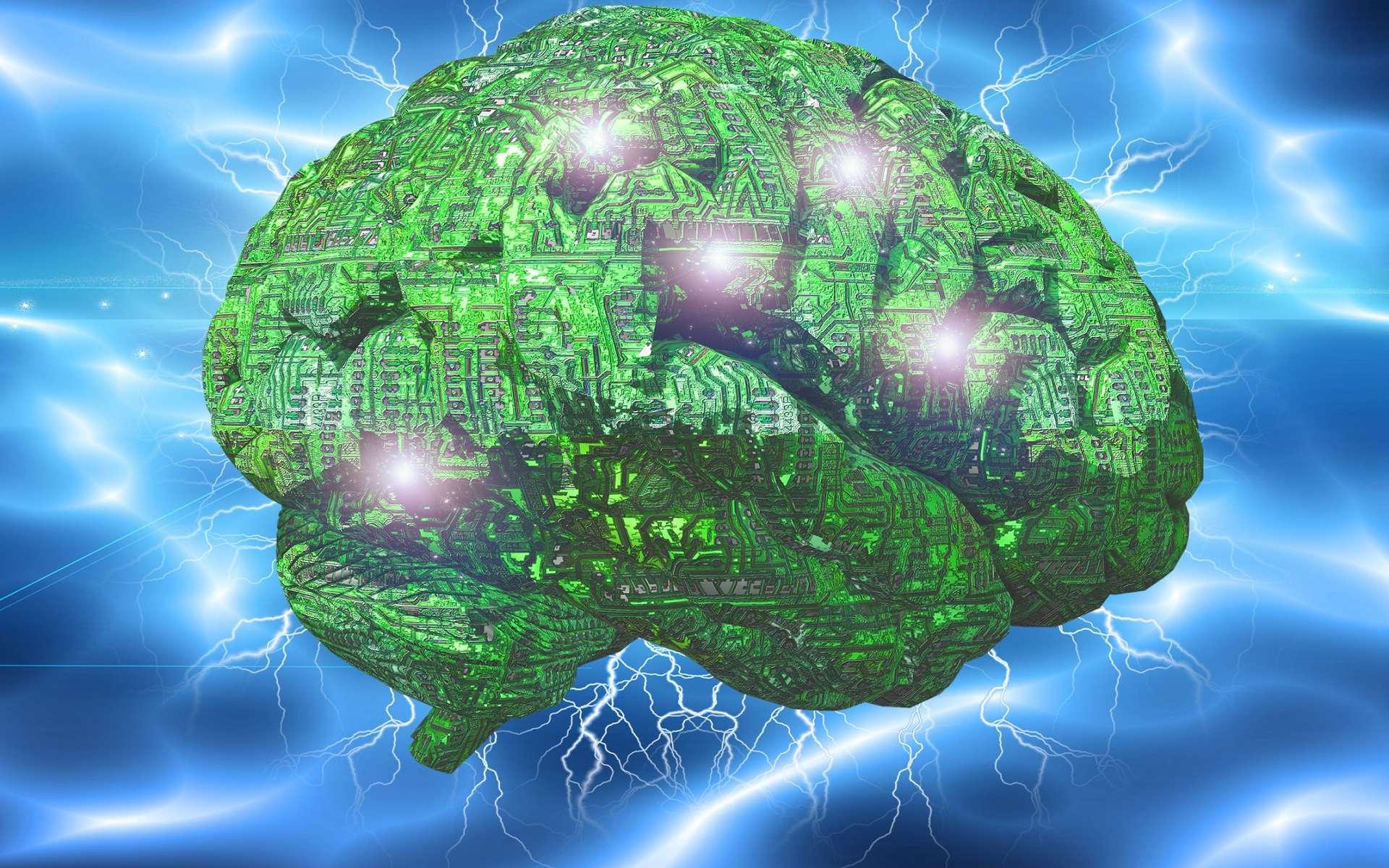 Un gros cerveau, avantage ou inconvénient? © Bruce Rolff, Shutterstock