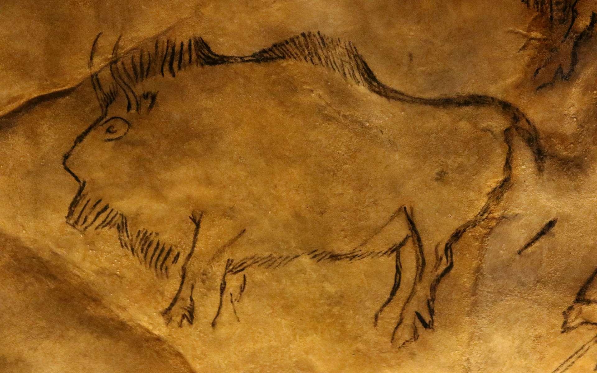 les artistes préhistoriques étaient-ils shootés pour réaliser leurs peintures rupestres ?