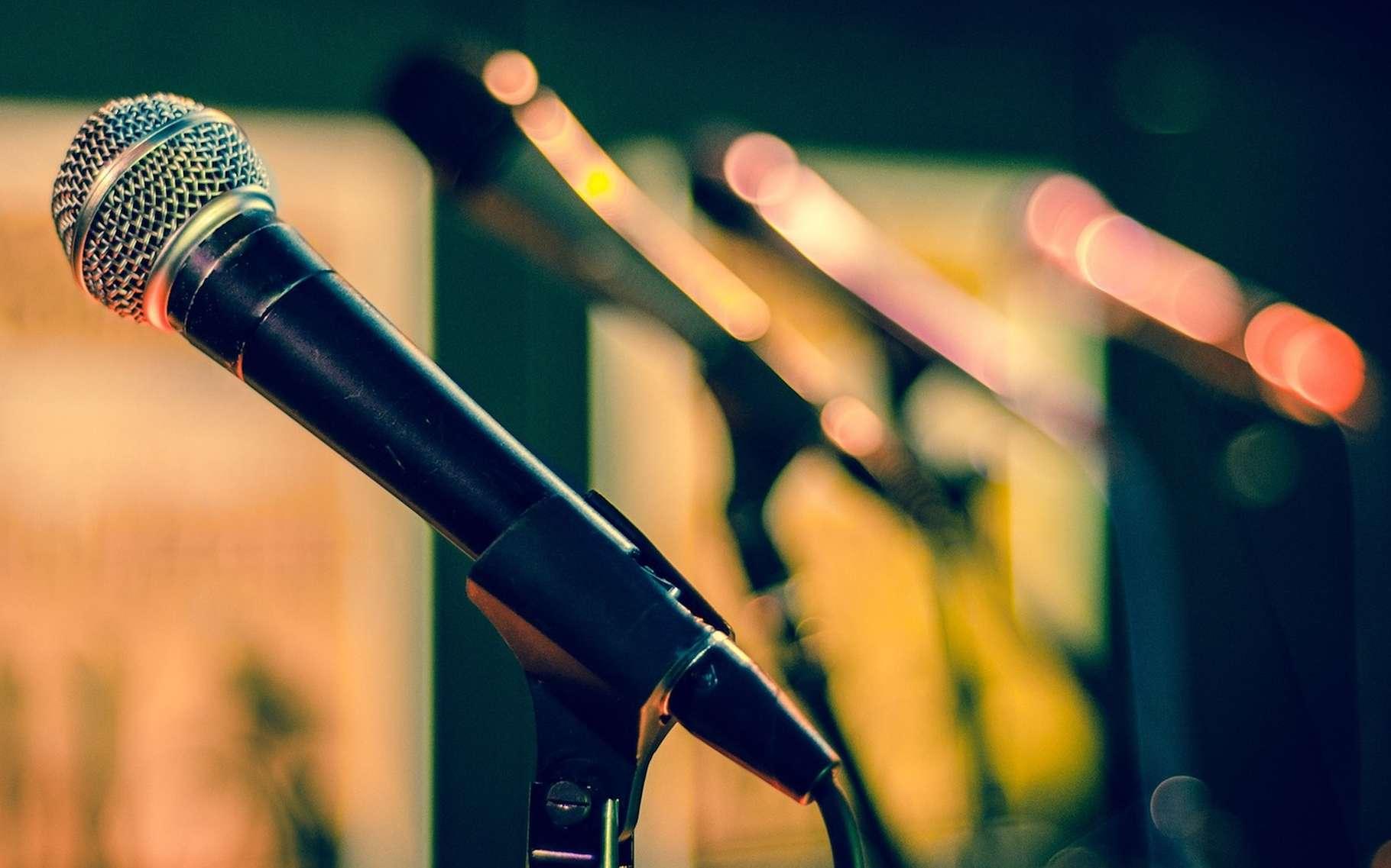Avoir une voix grave semble présenter un avantage en matière de séduction tout autant qu'en matière de réussite professionnelle. © Kitterphoto, Pixabay, CC0 Creative Commons