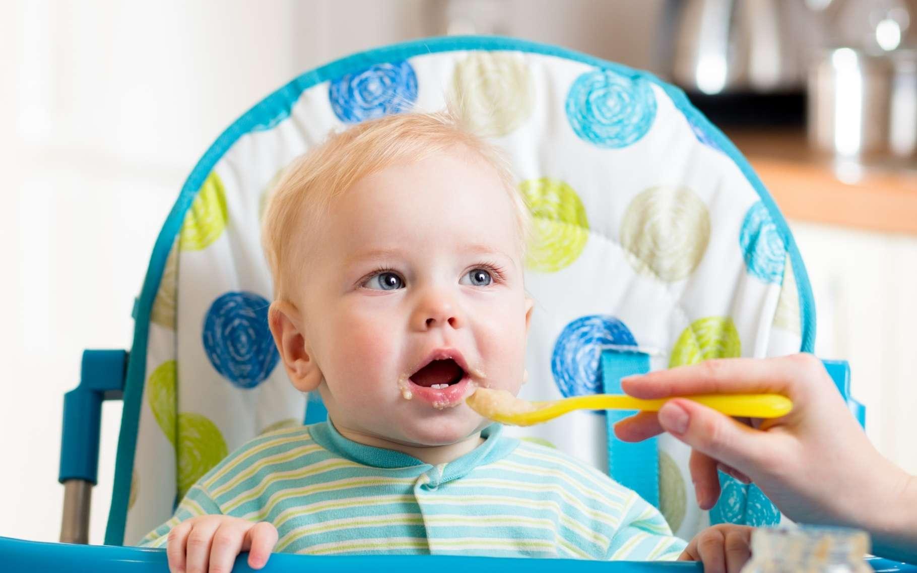 L'alimentation des enfants de moins de trois ans est bonne qualité en France, d'après l'étude de l'Anses. Les analyses montrent tout de même des points à surveiller ou à améliorer, notamment sur les teneurs en plusieurs substances toxiques. © Oksana Kuzmina, Shutterstock