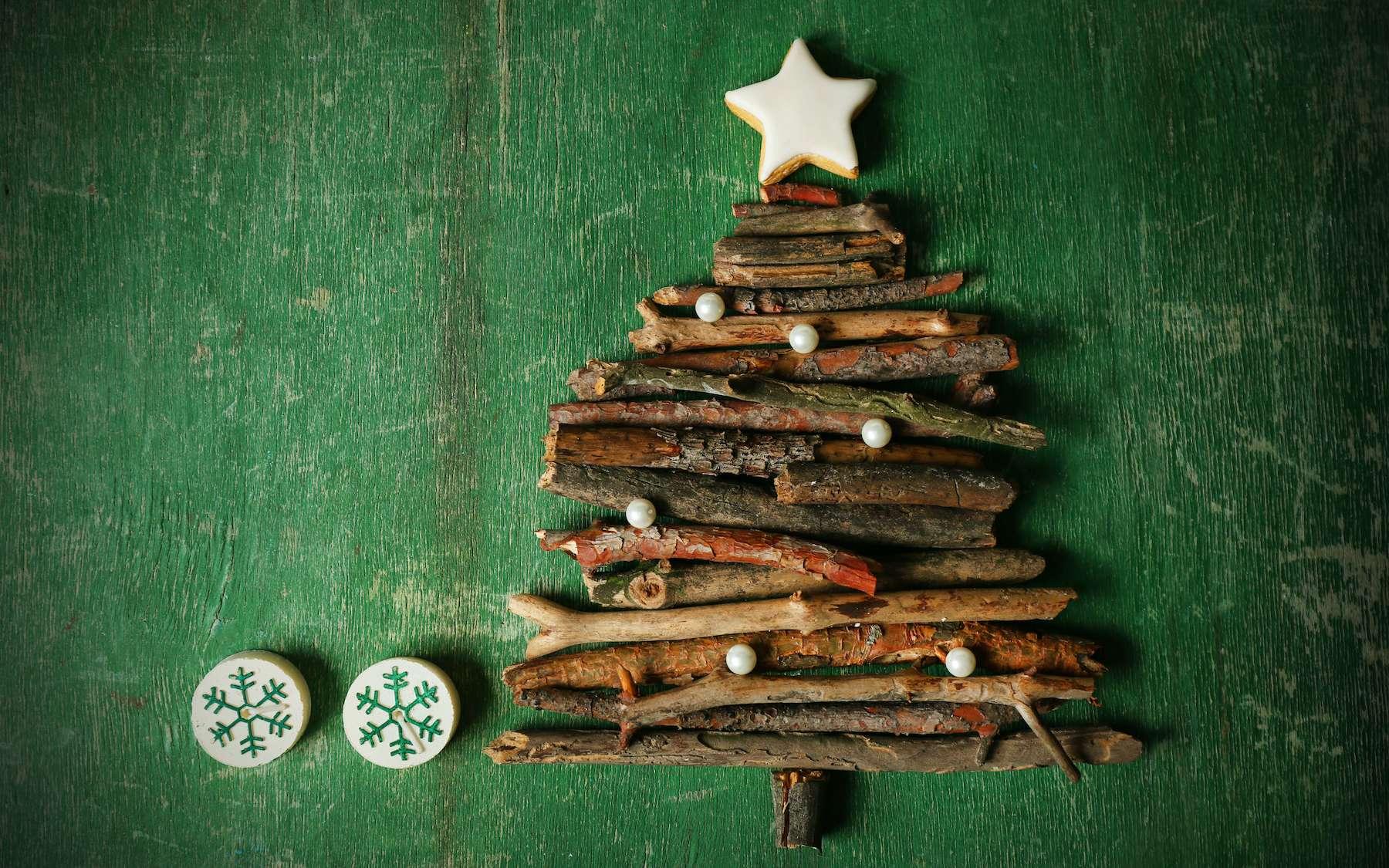 Comment passer un Noël vert © Africa Studio, Adobe Stock