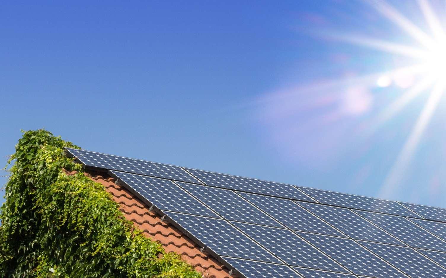 Pour profiter pleinement d'une énergie aussi abondante que le soleil, deux Suédois ont inventé de nouvelles cellules solaires à pigments photosensibles. Une innovation destinée pour le moment aux équipements électroniques auto-rechargeables mais qui, à terme, pourrait équiper les maisons et immeubles. © OFC Pictures, Adobe Stock