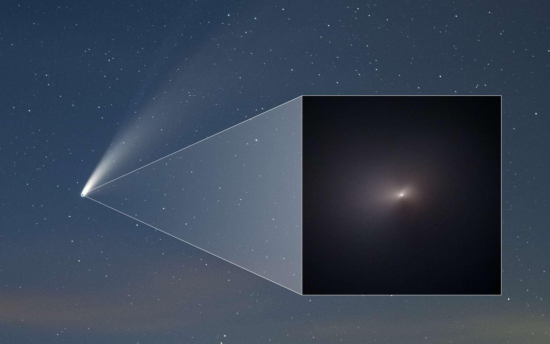 La comète Neowise photographiée depuis la Terre et dans l'encart, la région imagée par Hubble. © Nasa, ESA, STScI, Q. Zhang (Caltech), Z. Levay.
