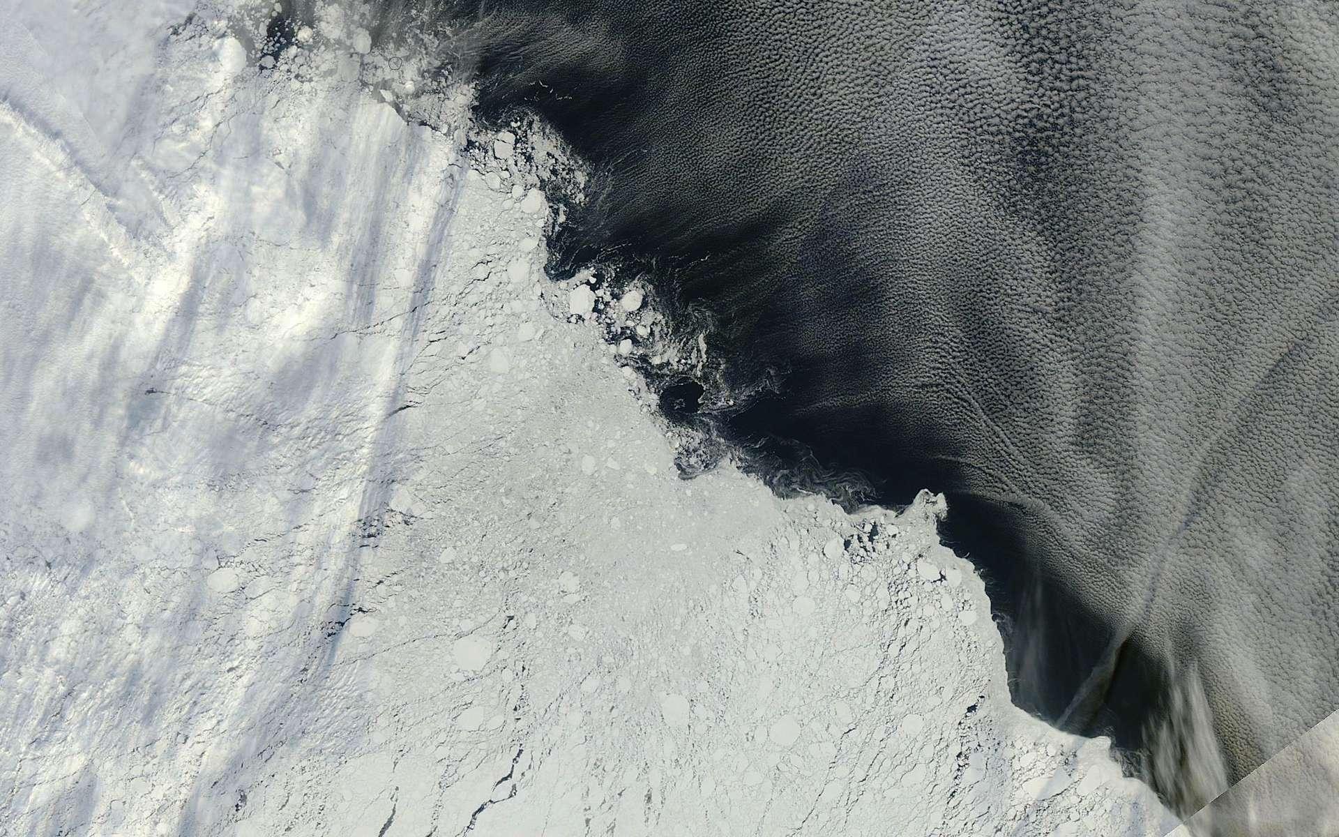Une image de la banquise arctique au nord-est des îles de Nouvelle-Sibérie, saisie par l'instrument Modis du satellite Terra de la Nasa le 13 septembre 2013. La glace de mer domine la moitié inférieure gauche de l'image. À droite se trouve l'océan, surmonté de formations nuageuses. © Nasa Worldview