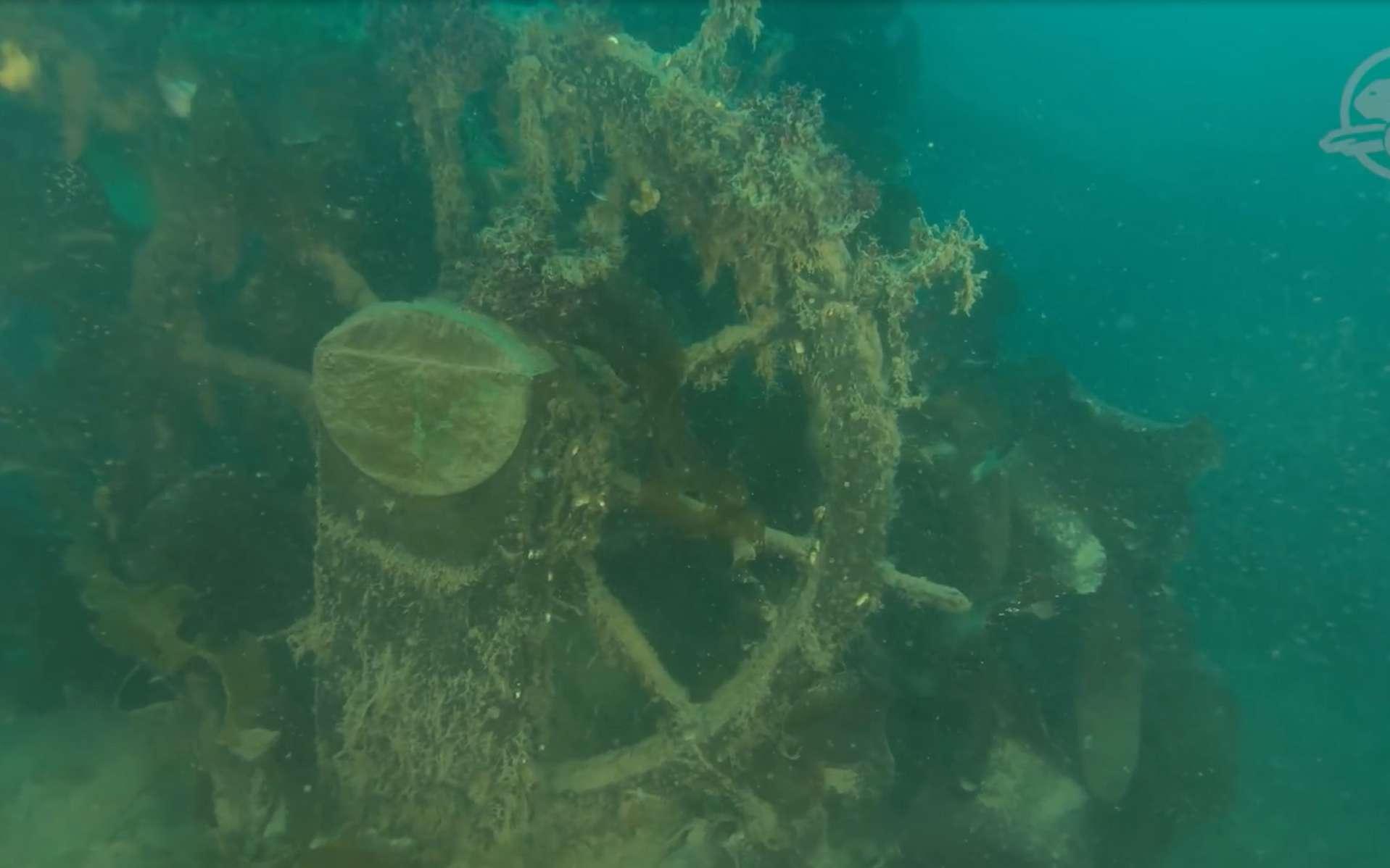 La roue du navire HMS Terror trône intact au fond de l'eau froide. © capture YouTube, Parcs Canada