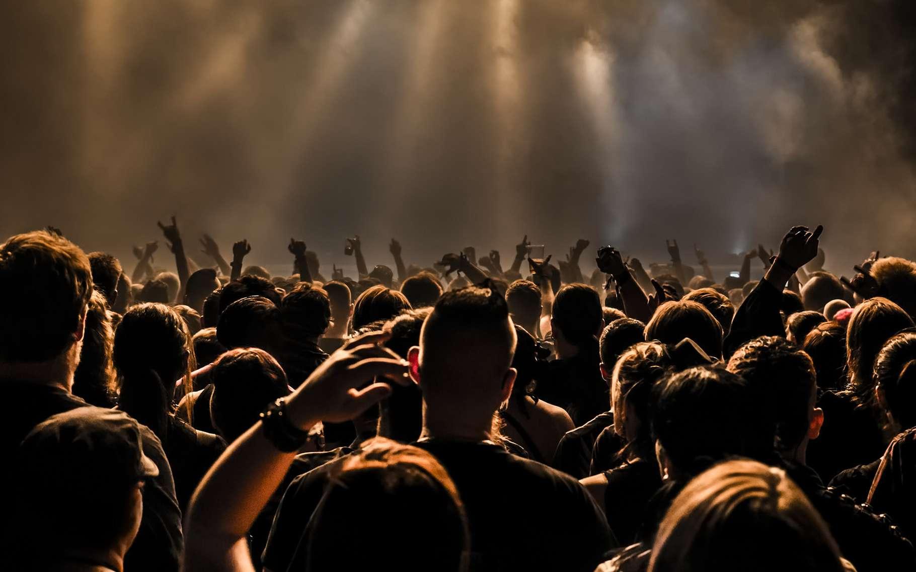 Vous assistez à un concert ? Portez des bouchons auditifs avec le marquage CE. Cela permet d'éviter un vieillissement prématuré du système auditif. © dwphotos, Shutterstock