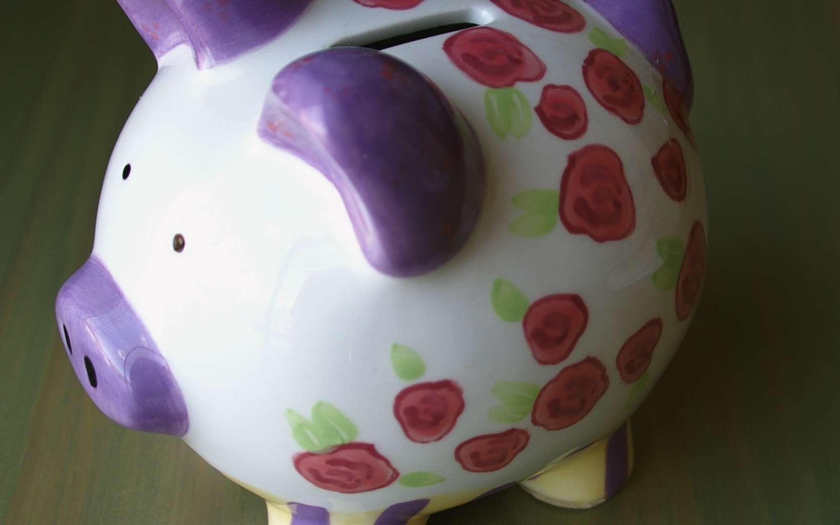 Méfiez-vous des « fausses » banques éthiques ! Beaucoup d'établissements surfent de nos jours sur la vague du développement durable pour proposer des investissements « éthiques » qui ne le sont pas vraiment. © Joyous, Wikimedia, cc by sa 3.0