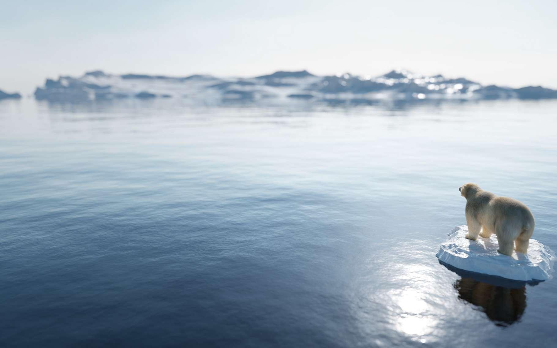 L'Arctique se réchauffe. © Photocreo Bednarek, Adobe Stock