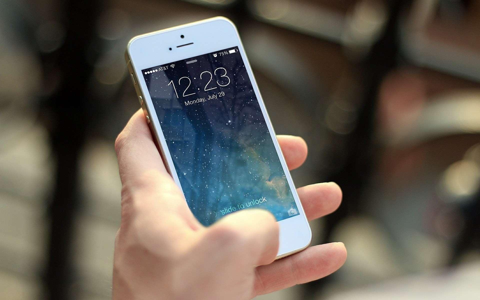 Apple et Google souhaitent intégrer leur technologie à l'intérieur même de leurs systèmes d'exploitation. © Jan Vasek / Pixabay