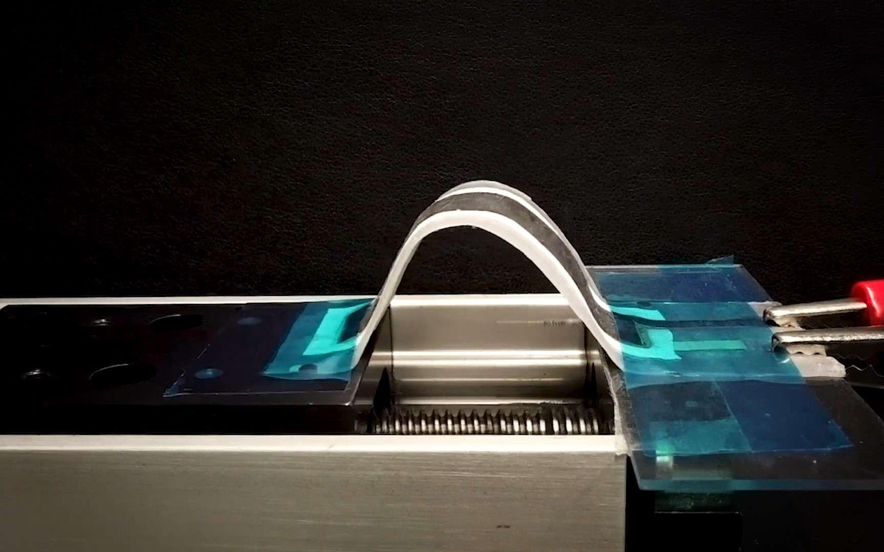 Des chercheurs ont créé une nouvelle batterie souple avec une densité surfacique d'énergie multipliée par dix. © Université de Californie à San Diego
