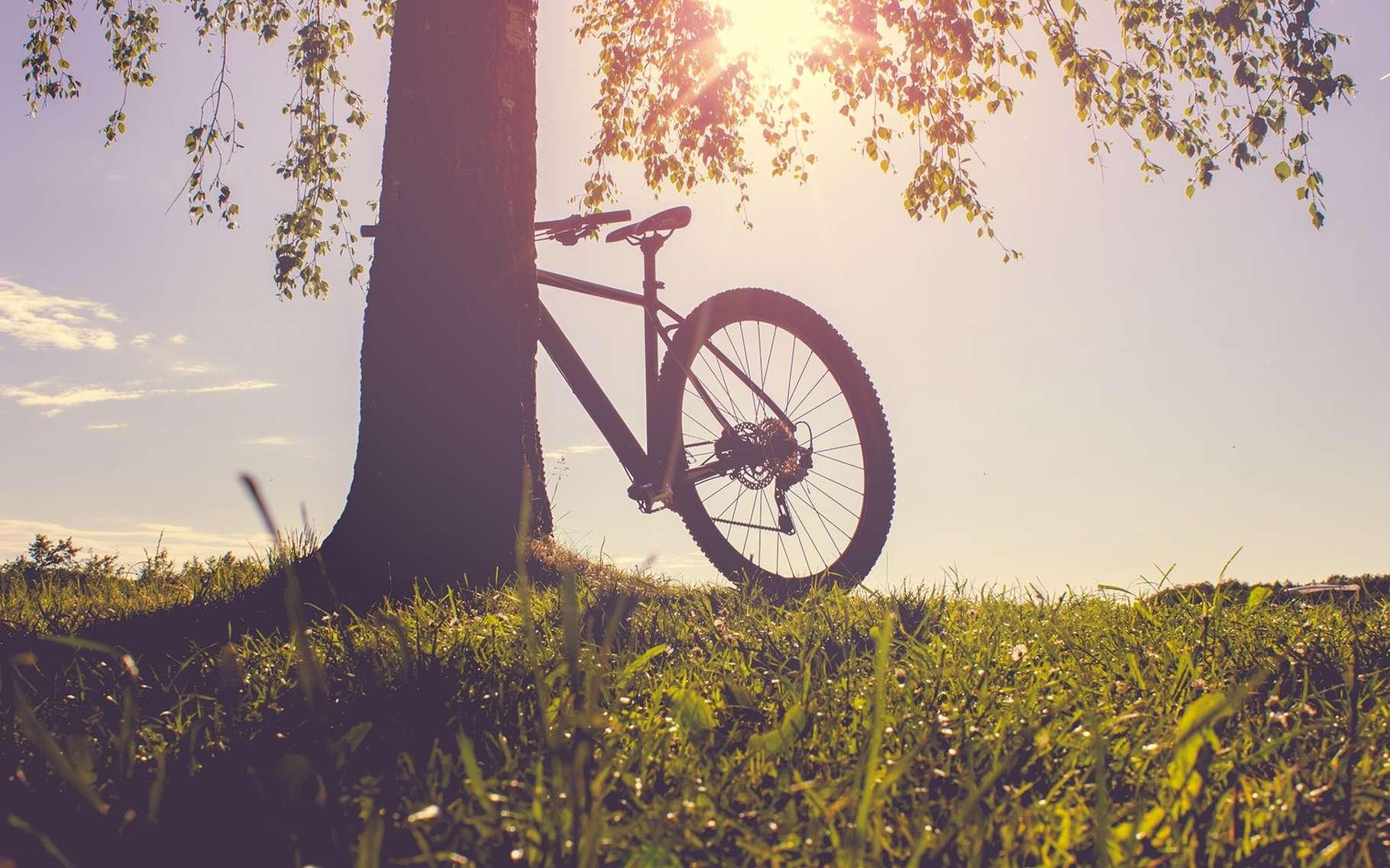 La semaine de quatre jours, c'est bon pour le moral et l'environnement ! © stockfotoart, Shutterstock
