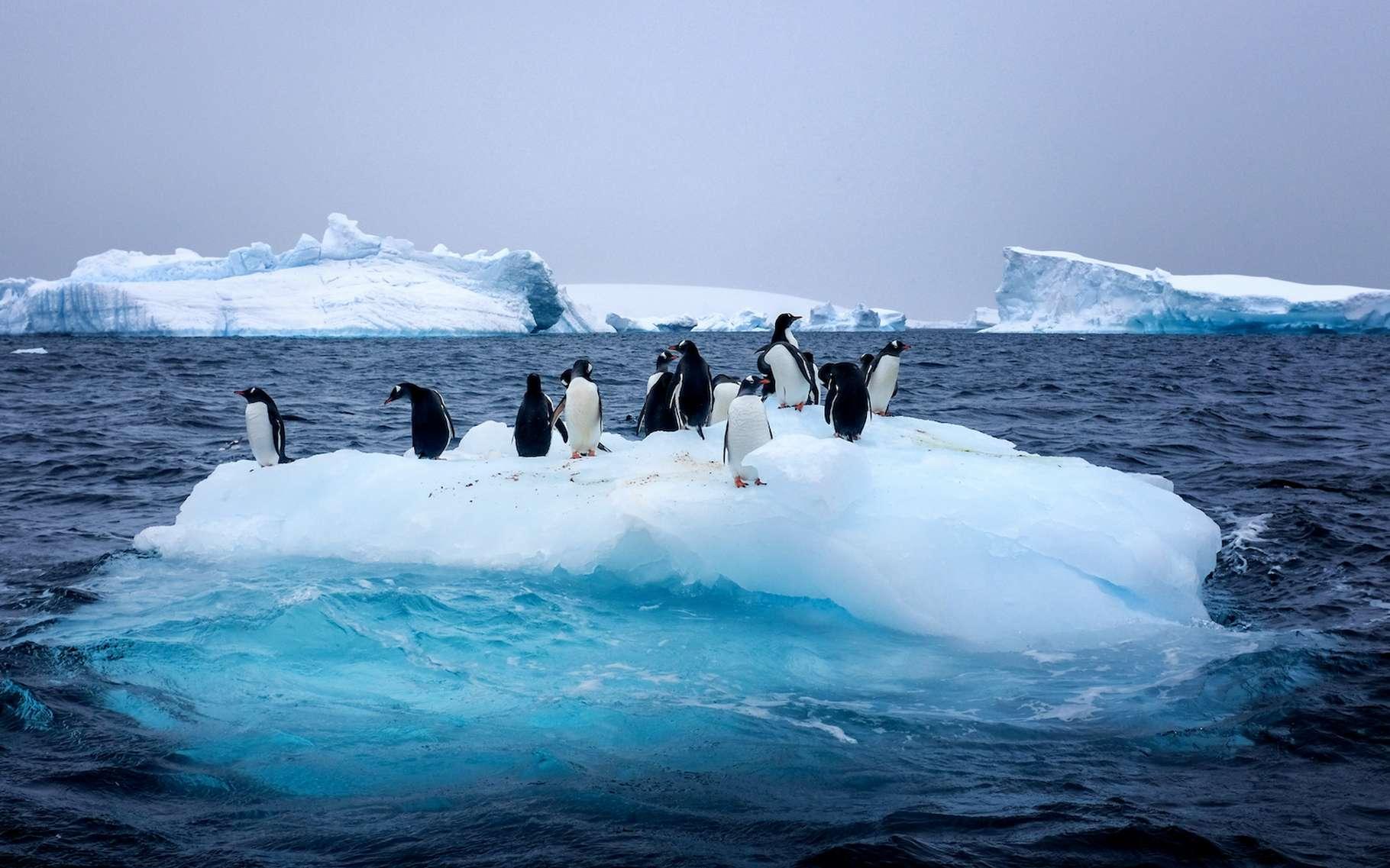 Selon des travaux de chercheurs français, britanniques et portugais, la fonte en surface de l'Antarctique de l'ouest est provoquée par des rivières atmosphériques qui transportent chaleur et humidité depuis les régions tempérées vers le pôle © Allen.G, Adobe Stock