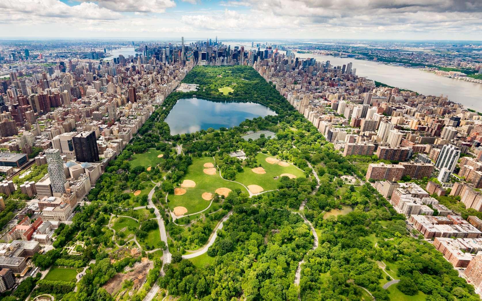 Central Park à New York et ses gratte-ciels à l'horizon. © AntonioLopez, fotolia