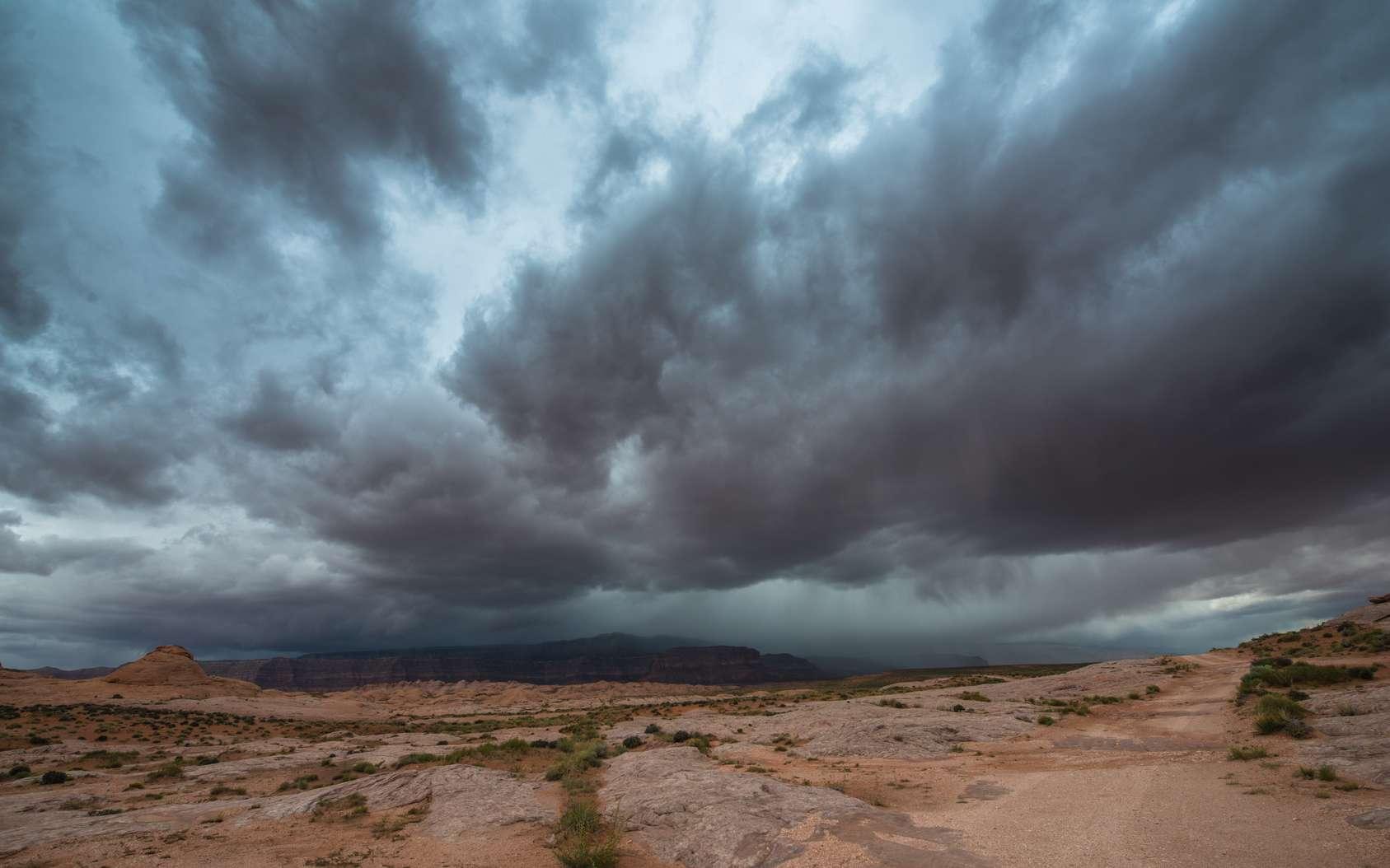 Le changement de régime des moussons africaines pourrait amener des pluies diluviennes au Sahel, victime de fréquentes sécheresses. © Krzysztof Wiktor, Fotolia