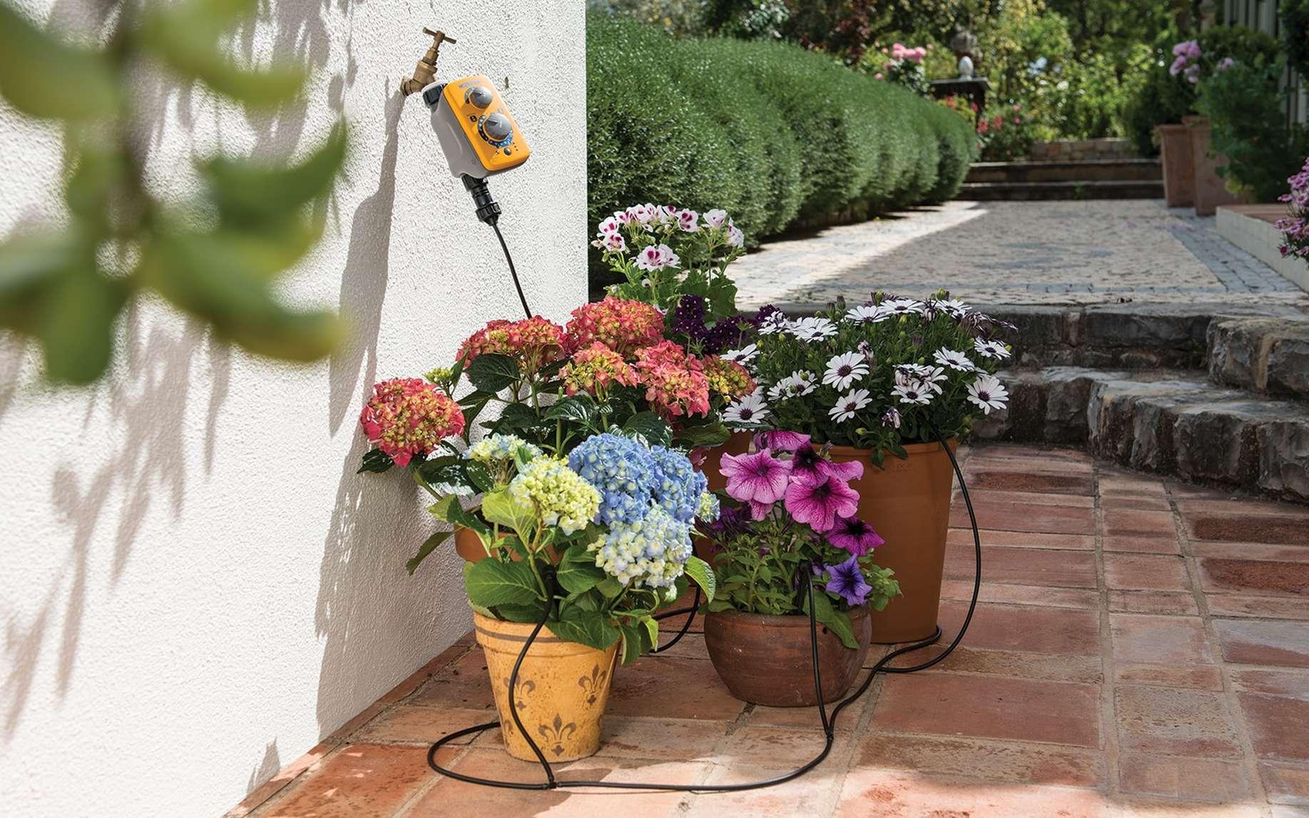 Grâce à la micro-irrigation, s'absenter pendant une longue période ne pose plus de problèmes pour arroser régulièrement les plantes en pots ou les jardinières. Associée à un programmateur, cette technique assure un arrosage des végétaux optimal. ©Hozelock