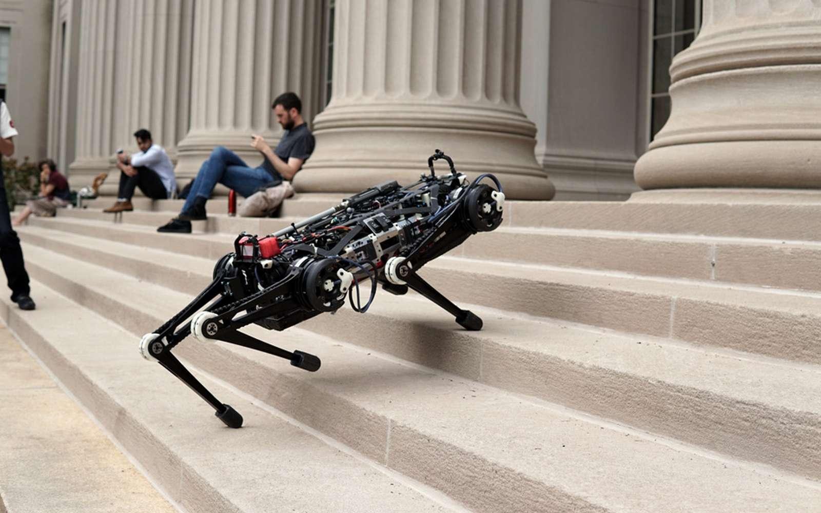 Le robot Cheetah 3 du MIT est beaucoup plus agile que son prédécesseur. © MIT