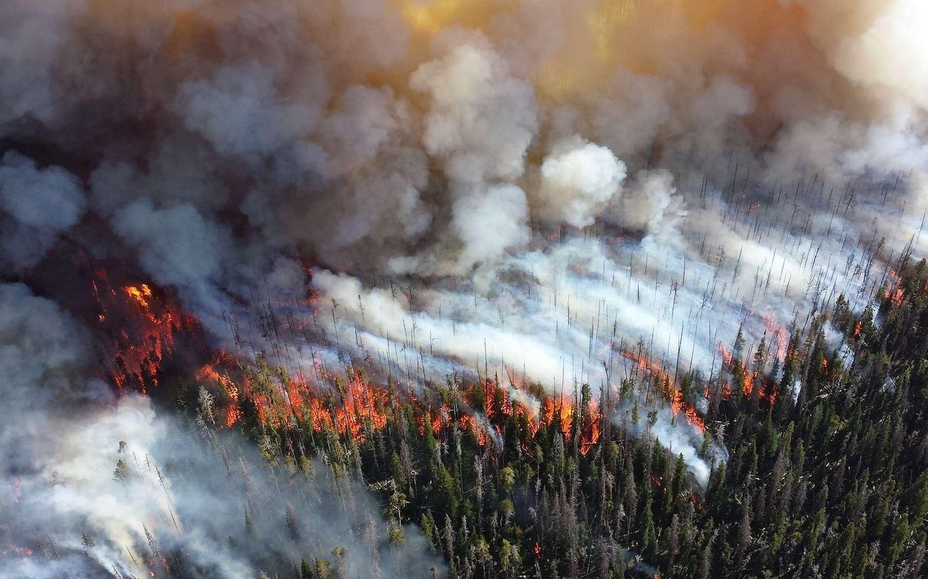 Les feux de forêt émettent une grande quantité de monoxyde de carbone, un gaz qui peut causer à l'Homme des intoxications mortelles. Quels sont les symptômes et traitements de l'intoxication au monoxyde de carbone ? © skeeze, Pixabay, DP