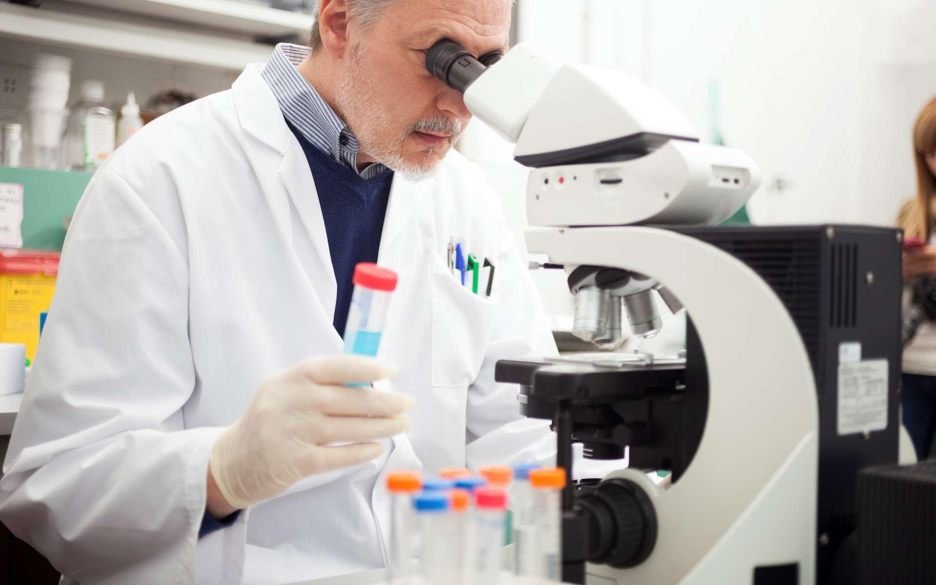 Des anticorps dits « neutralisants à large spectre » (bNAb) ont été identifiés pour leur capacité à bloquer la réplication de très nombreuses souches de VIH-1. Ils sont également capables, pour les plus efficaces d'entre eux, de reconnaître directement les cellules qui sont infectées et d'entraîner leur destruction par celles dites Natural Killer (NK). © Minerva Studio, Shutterstock.com