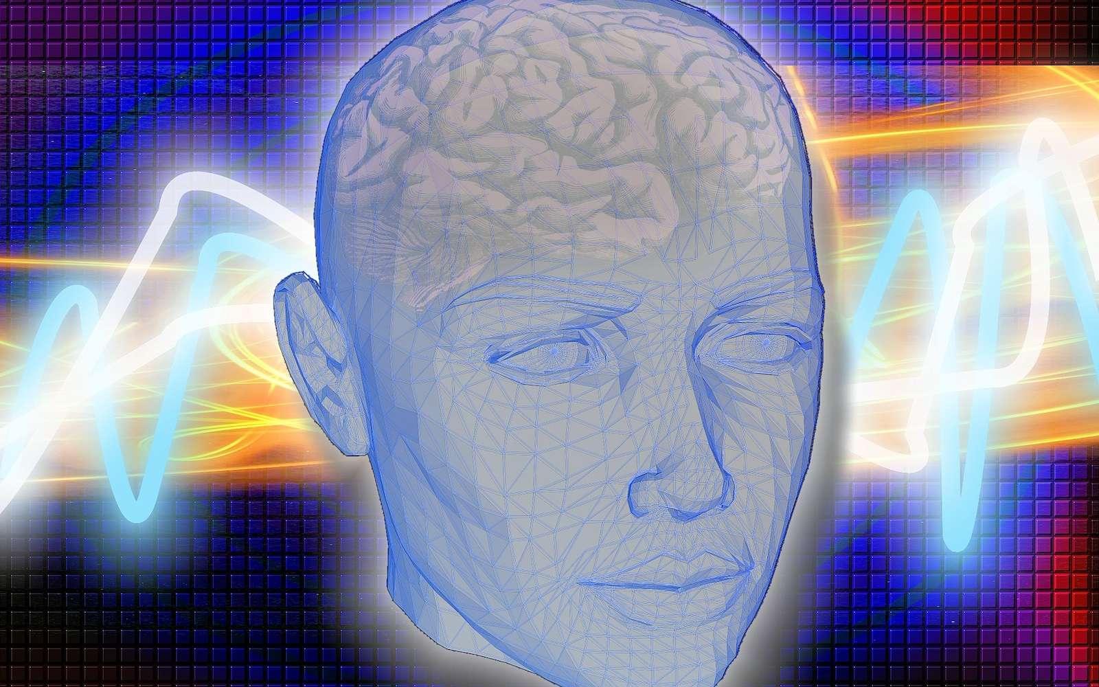 Pour leurs expériences, les chercheurs ont utilisé un système d'électrodes invasif pour mesurer l'activité du cerveau. © kalhh, pixabay