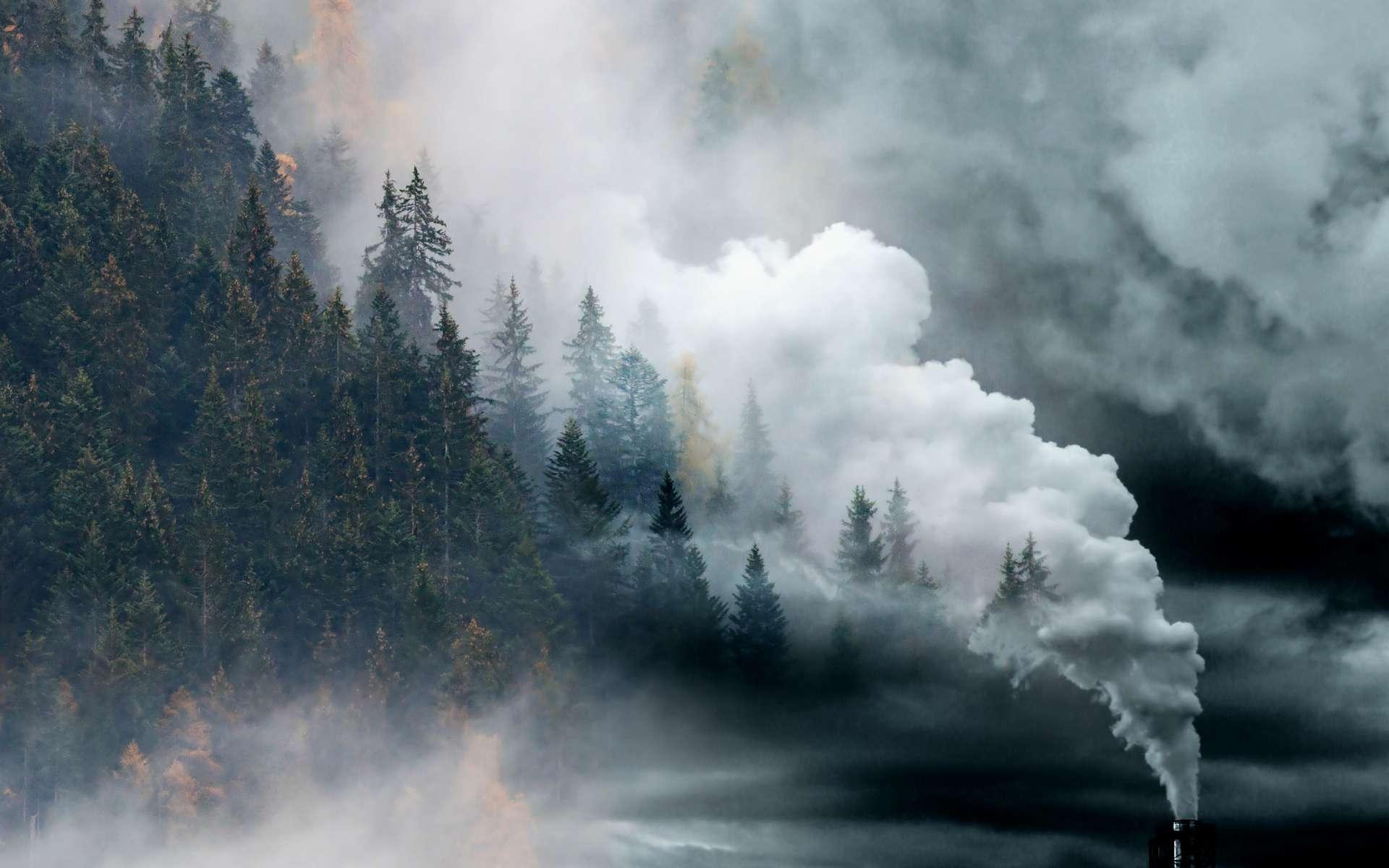 Changement climatique : quels sont les engagements pris par les 40 états ? © Melinda Nagy, Adobe Stock