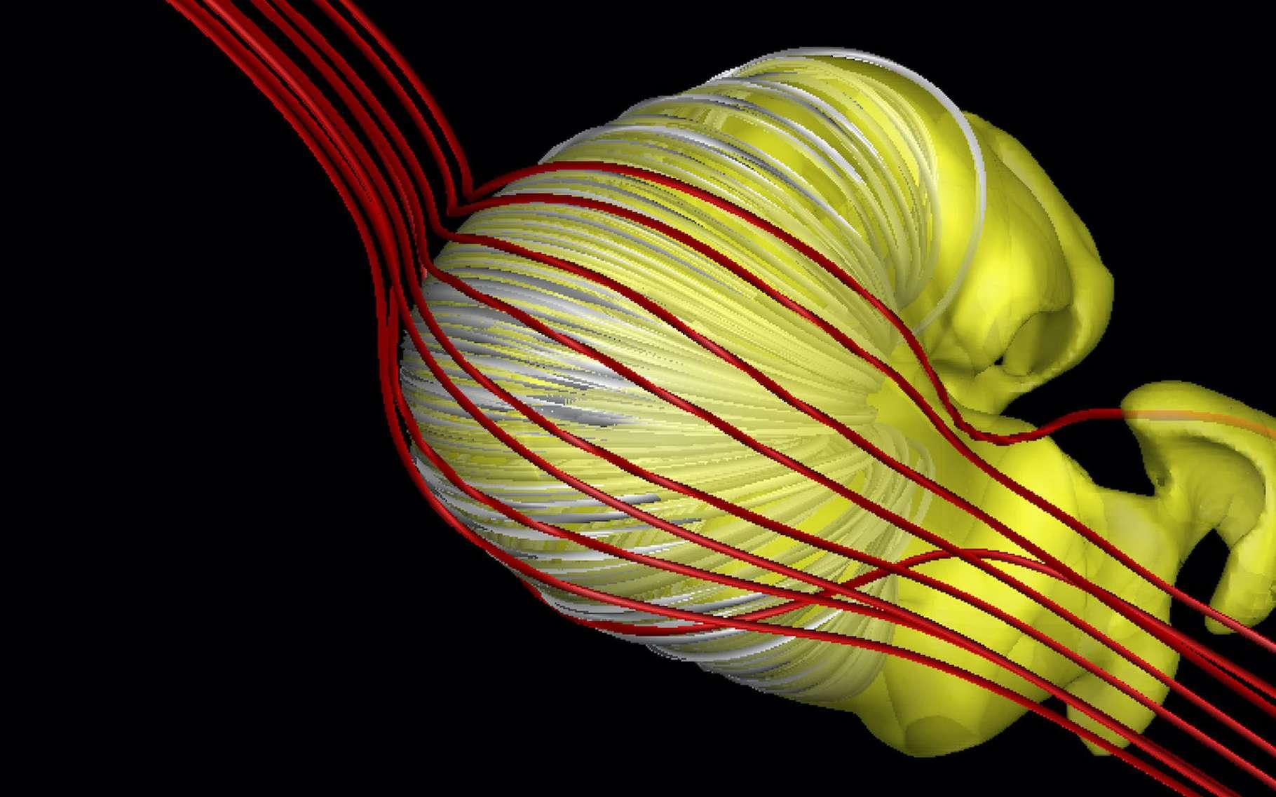 L'héliosphère aurait une forme de « croissant dégonflé ». © Merav Opher et al., Université de Boston