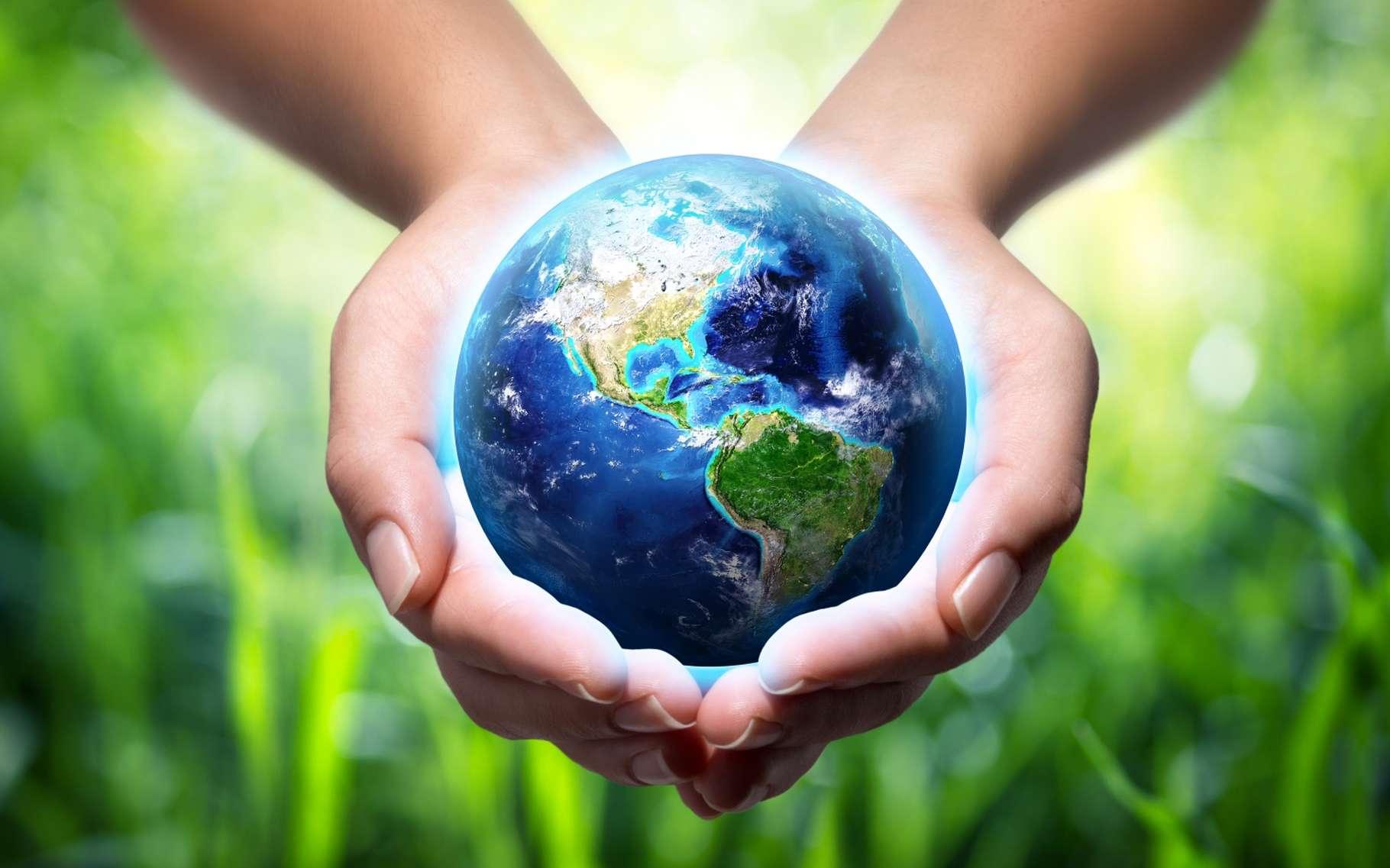 La COP 22 s'est achevée avec un peu d'amertume mais de nombreux programmes sont déjà lancés. © Romolo Tavani, Shutterstock