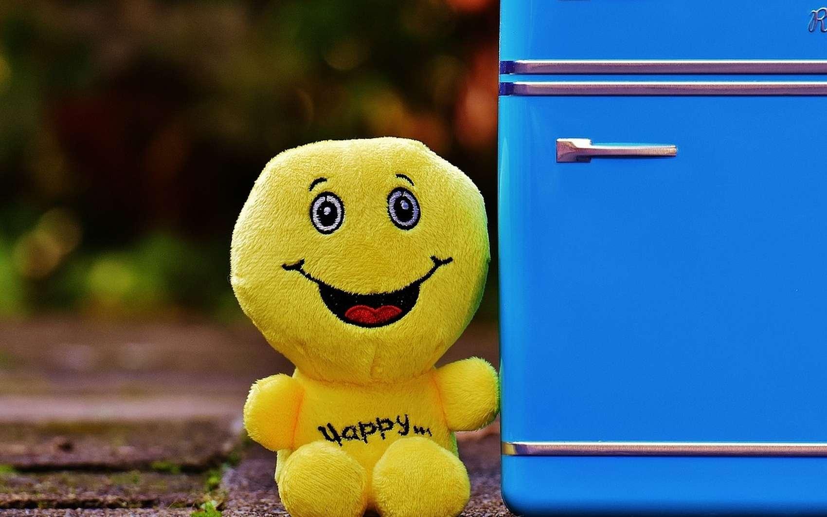 Le lavage du réfrigérateur doit être fait régulièrement, pour des raisons de propreté, d'efficacité et de santé. © Pixabay