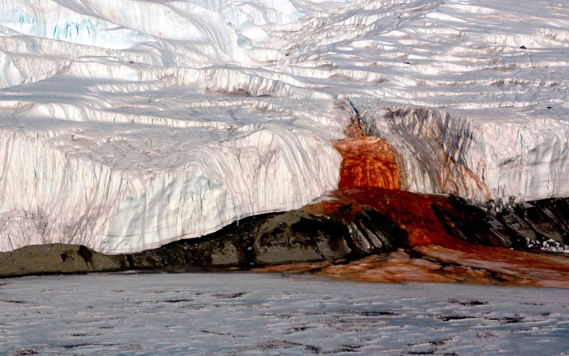 Les écoulements d'eau rouge du glacier Taylor. Source Commons