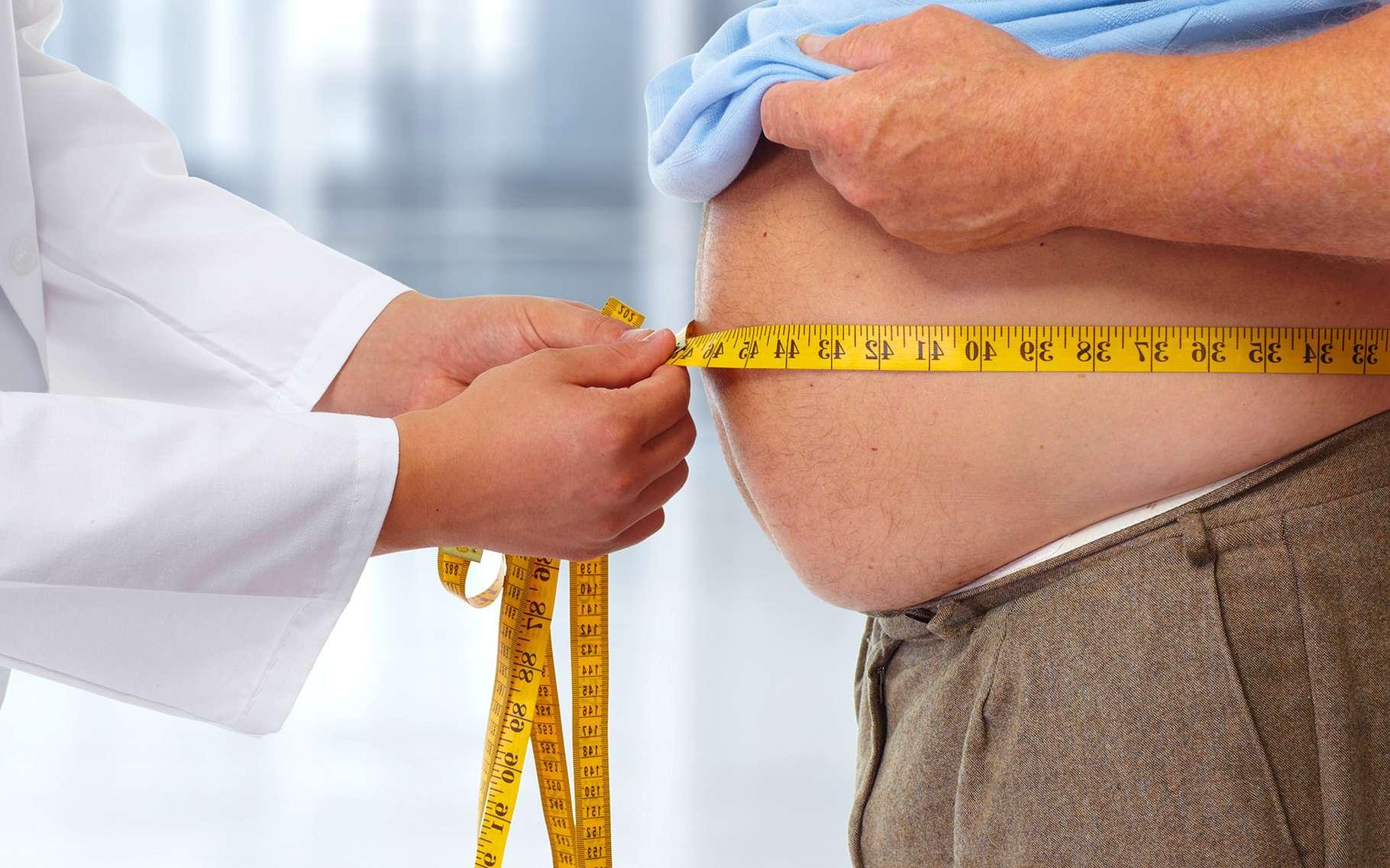 L'obésité est due à un déséquilibre entre les apports nutritionnels et la dépense énergétique. Un traitement possible consisterait à activer la formation de tissu adipeux brun capable de consommer des graisses. © kurhan, Shutterstock