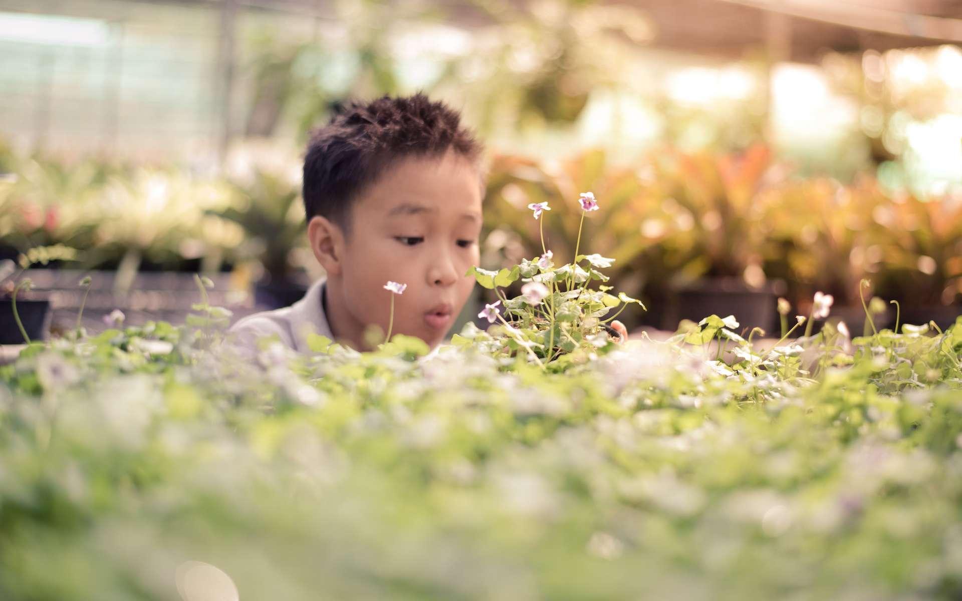 Le développement durable est une conception globalisée de l'économie. © Tatananas, Flickr, CC by-sa 2.0