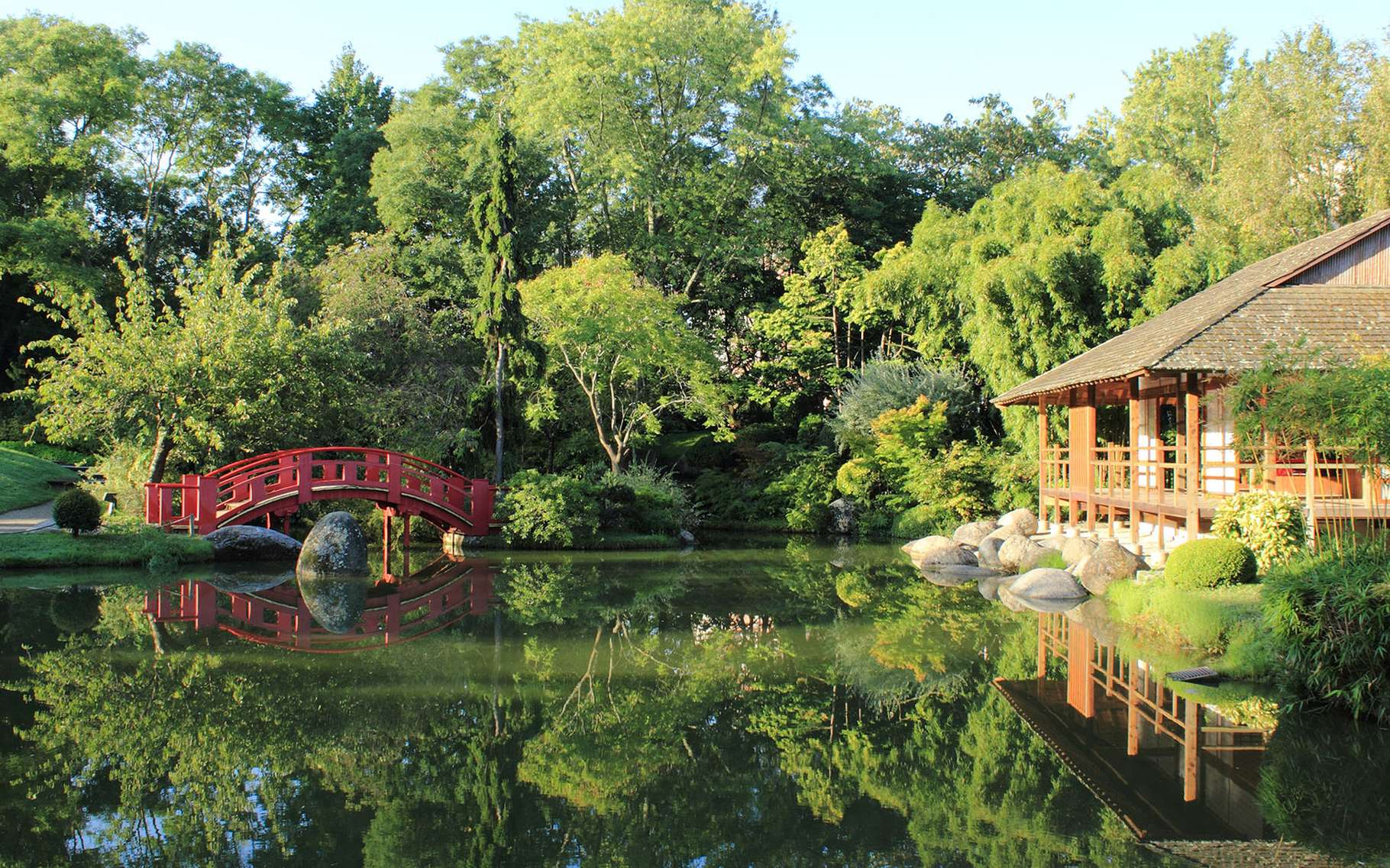 Le dépaysement d'un jardin japonais au cœur de Toulouse. Le temps s'arrête en franchissant l'entrée de ce jardin japonais tout récent, conçu en 1981, sous le mandat de Pierre Baudis, maire de Toulouse. En plein centre de la ville rose, au cœur du parc de Compans-Caffarelli, vaste espace vert de 10 hectares, il occupe 7.000 m2. S'inspirant des jardins créés à Kyoto entre les XIVe et XVIe siècles (correspondant aux périodes de Muromachi et d'Edo), c'est un jardin de type Tsukiyama, c'est-à-dire un composé de collines artificielles. Il est une synthèse des jardins japonais et a été conçu pour offrir le plus d'intimité possible dans une mise en scène des mondes minéral, végétal et aquatique, avec notamment d'un plan d'eau avec son île au milieu, l'ensemble est agrémenté de nombreux éléments décoratifs typiques et d'un pavillon des thés. Une belle promenade, classée « Jardin remarquable de France » agrémentée de panneaux explicatifs pour s'immerger dans la culture japonaise chère au cœur du son créateur.Lac et pavillon du thé, jardin japonais de Toulouse © PierreSelim, CC by 3.0