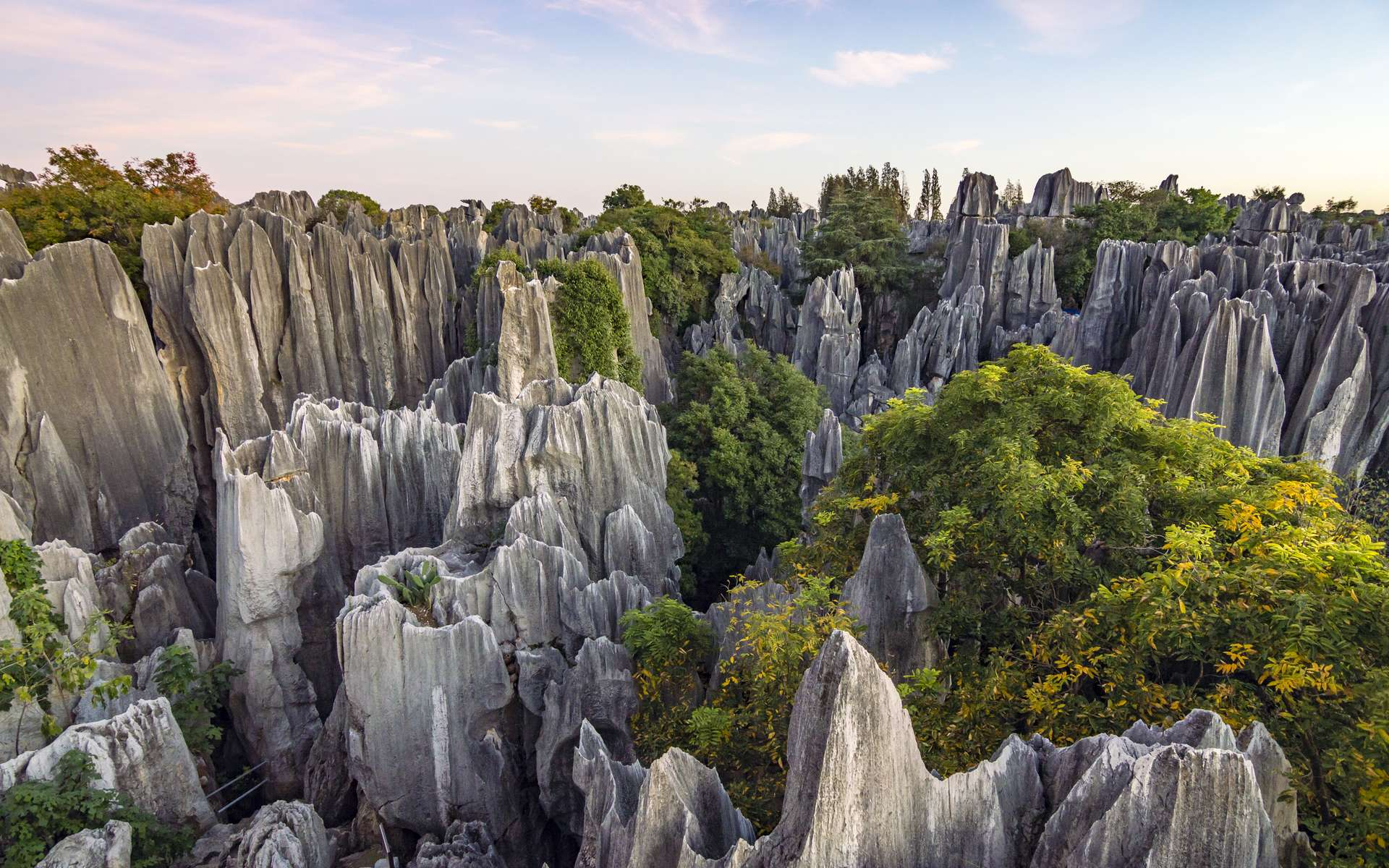 Le forêt de pierres de Shilin, dans la province du Yunnan (Chine). © Andrii_lutsyk, Adobe Stock