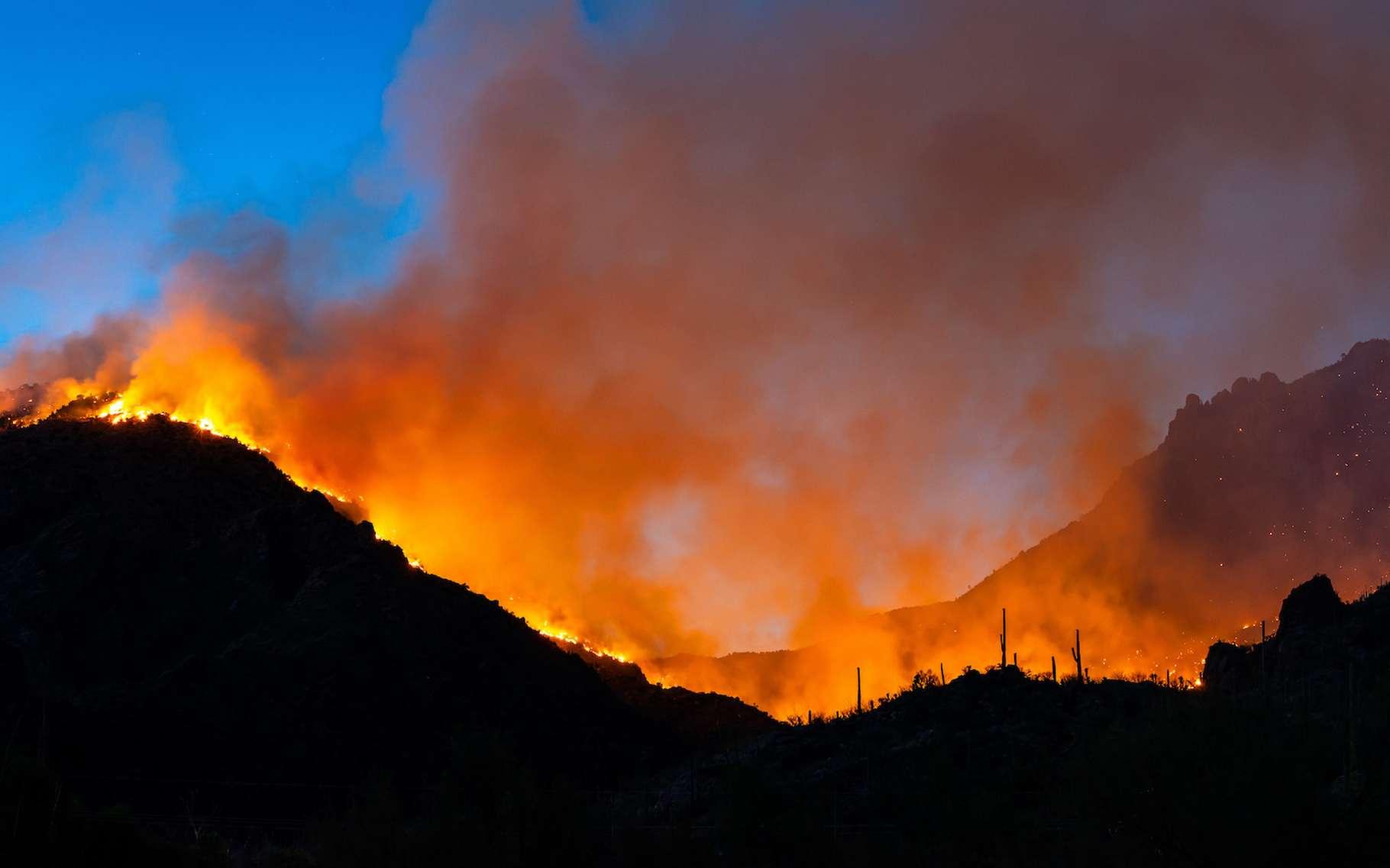 Vus de l'espace, les ravages d'un incendie en Arizona